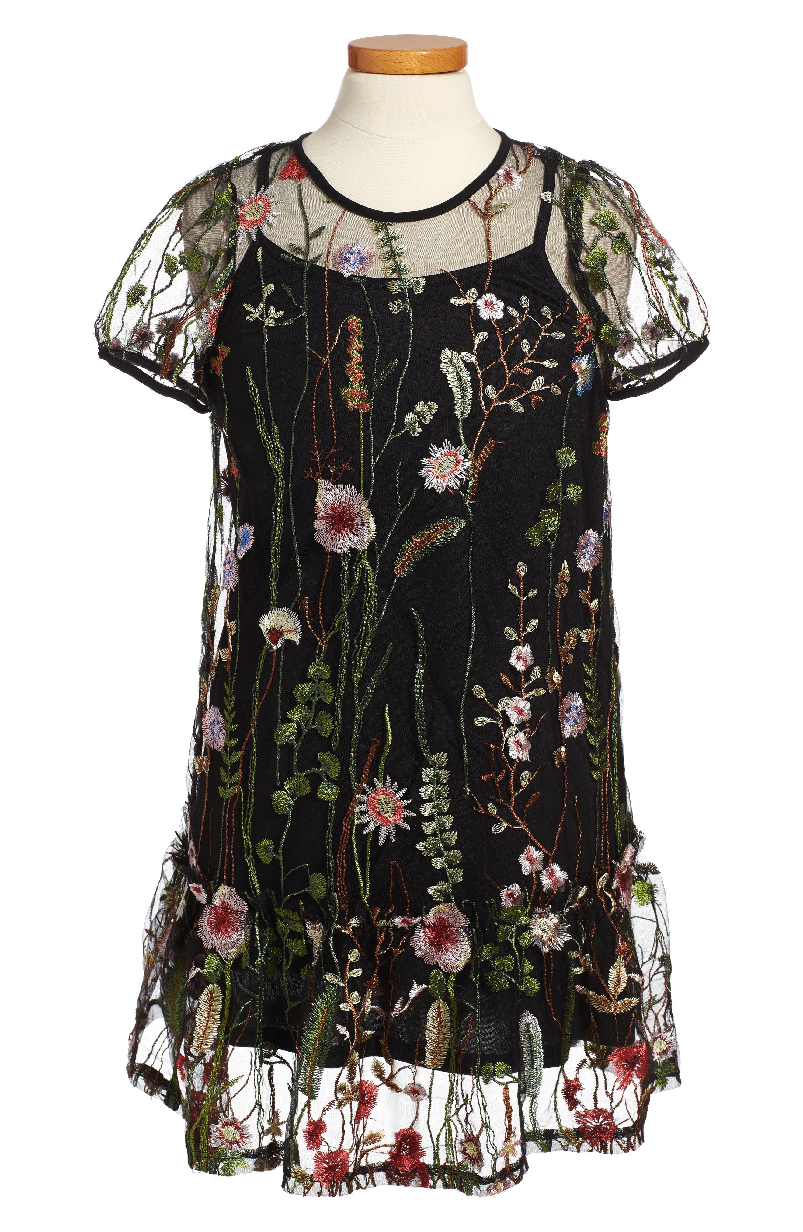 Embroidered Mesh Dress,                         Main,                         color, Black Multi