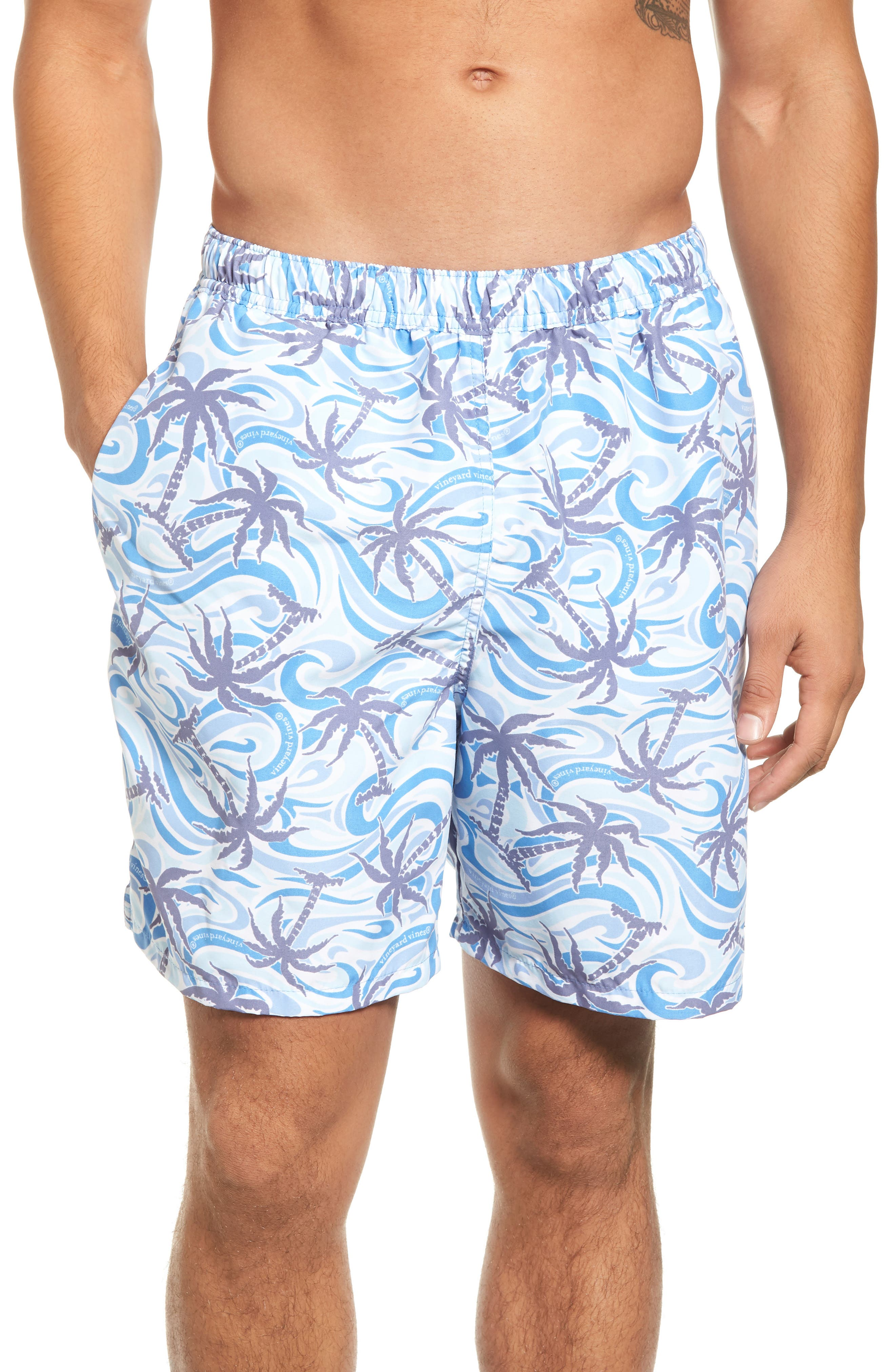 Chappy Wave Palm Tree Swim Trunks,                         Main,                         color, Jake Blue