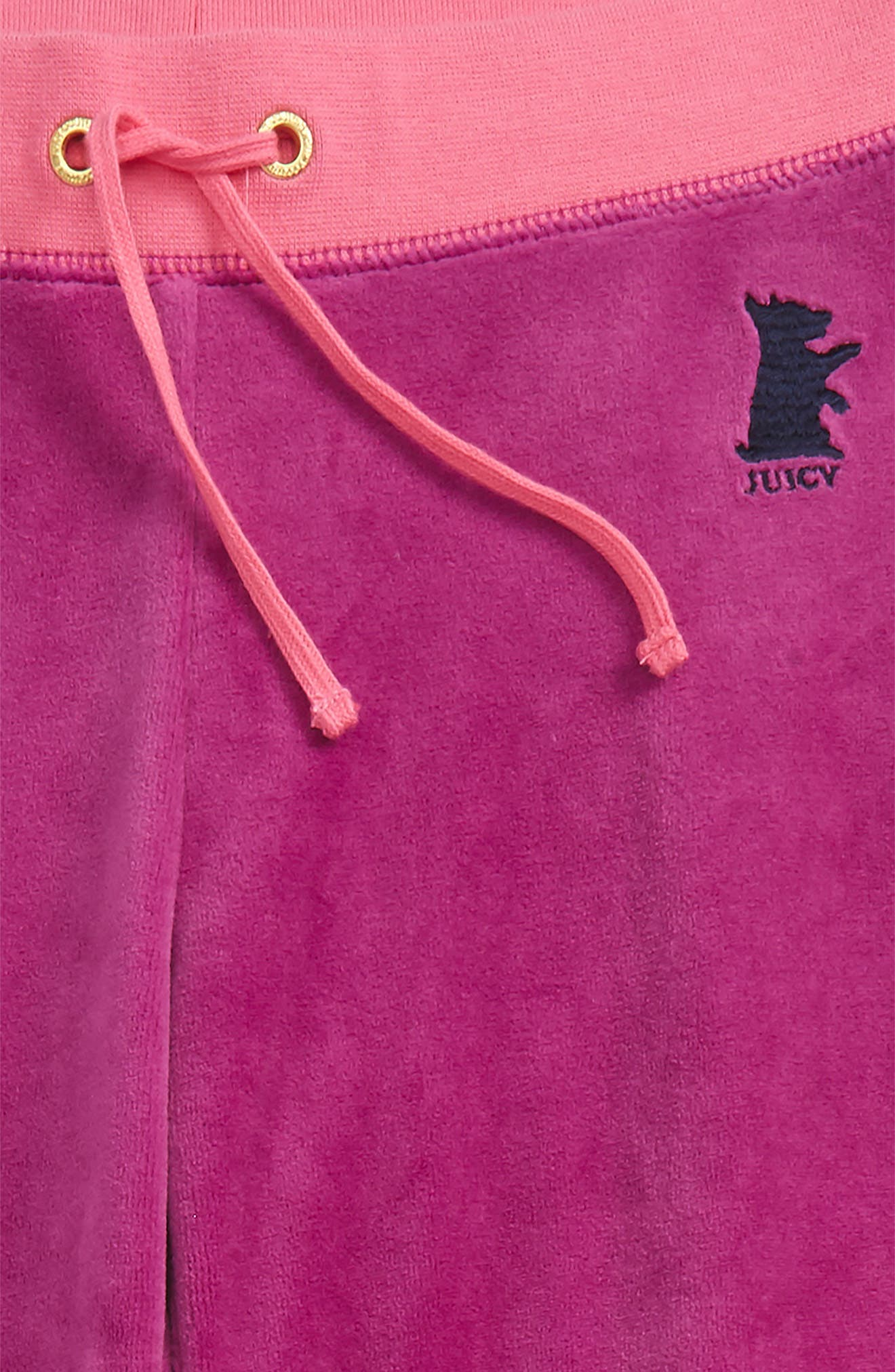 Zuma Velour Pants,                             Alternate thumbnail 2, color,                             Boysenberry
