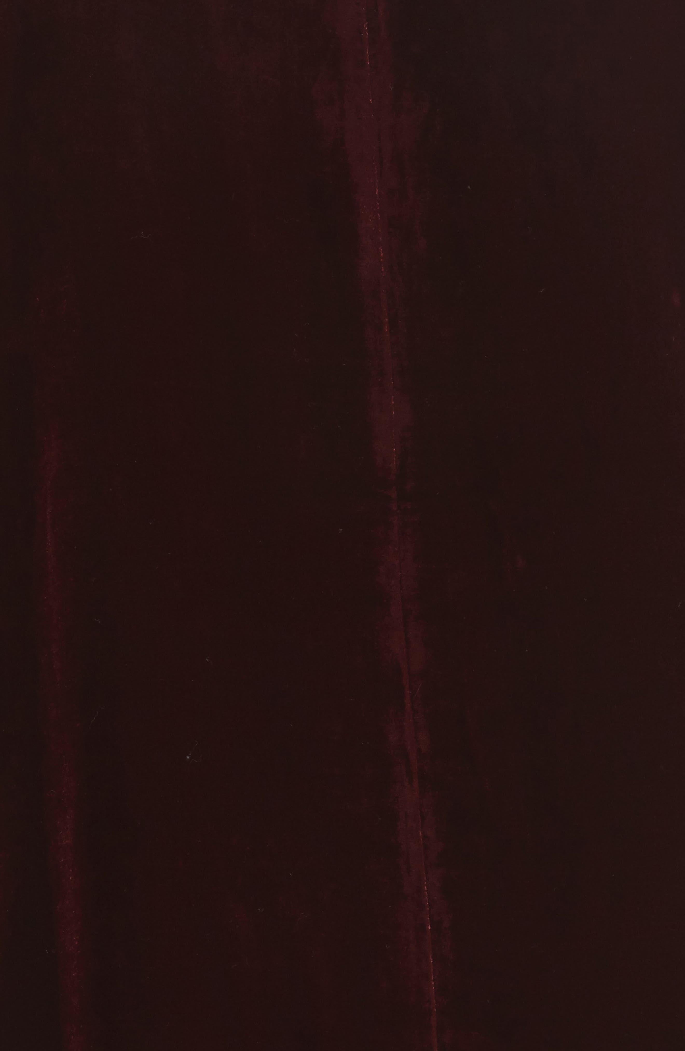 Alternate Image 5  - Eileen Fisher Boxy Velvet Top (Plus Size)