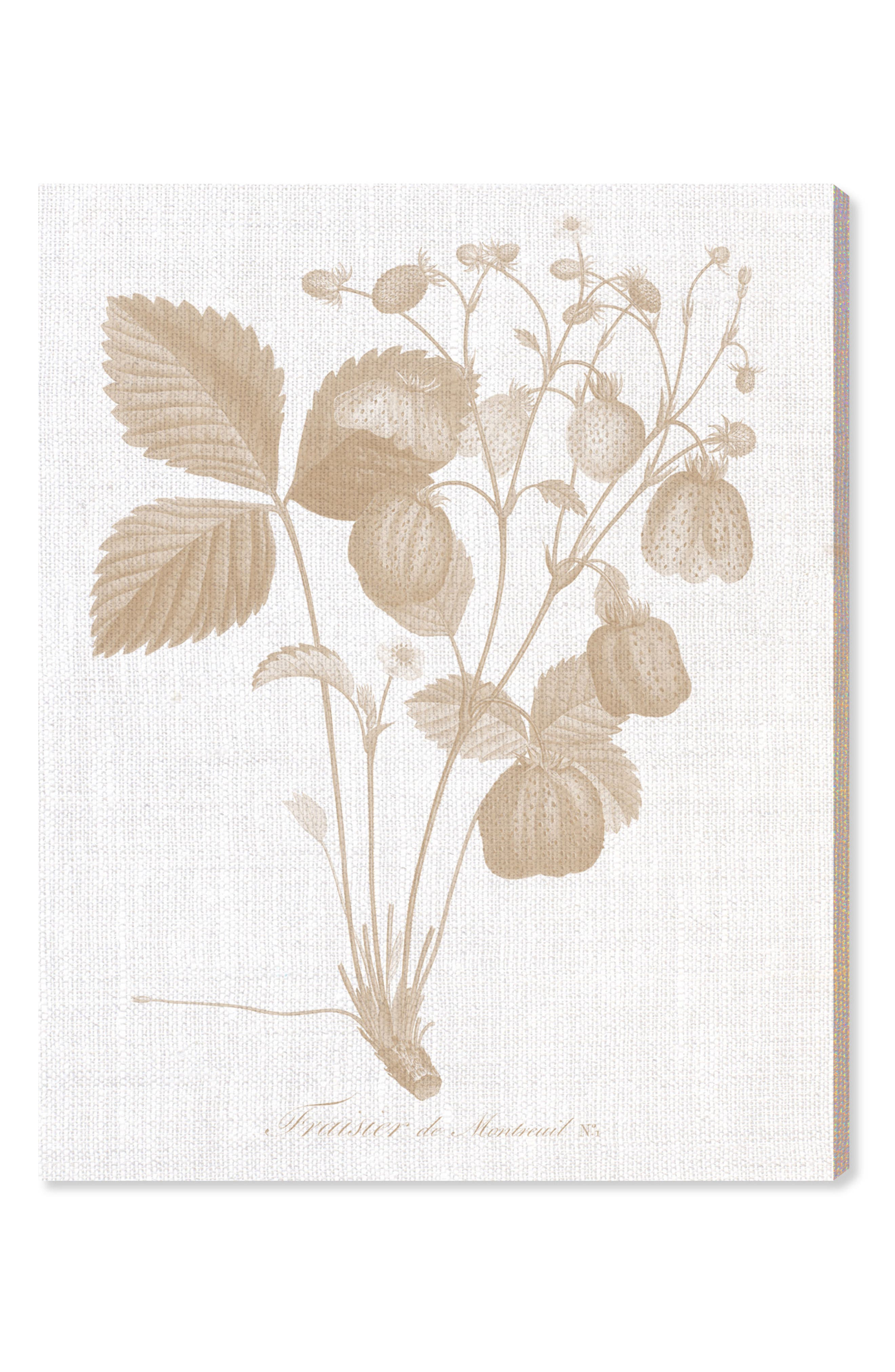 Alternate Image 1 Selected - Oliver Gal Fraisier Canvas Wall Art