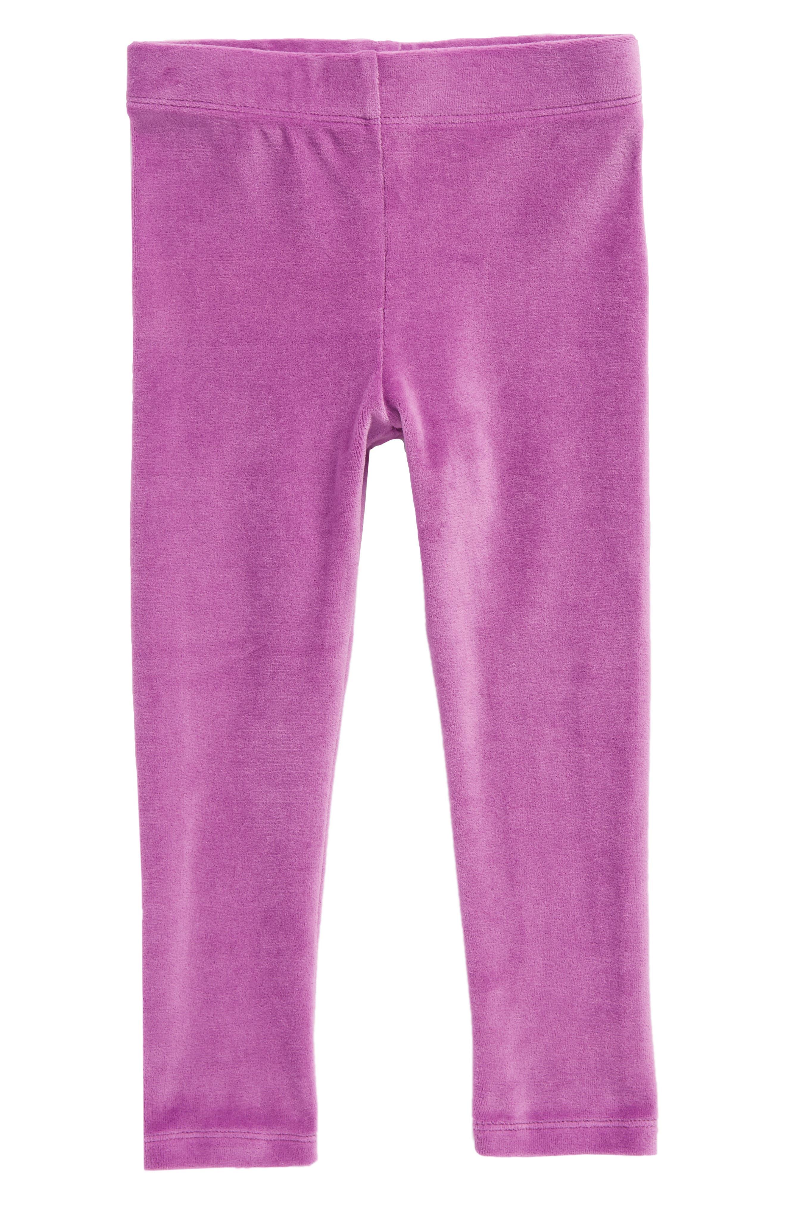 Velvet Leggings,                             Main thumbnail 1, color,                             Blackcurrant Purple