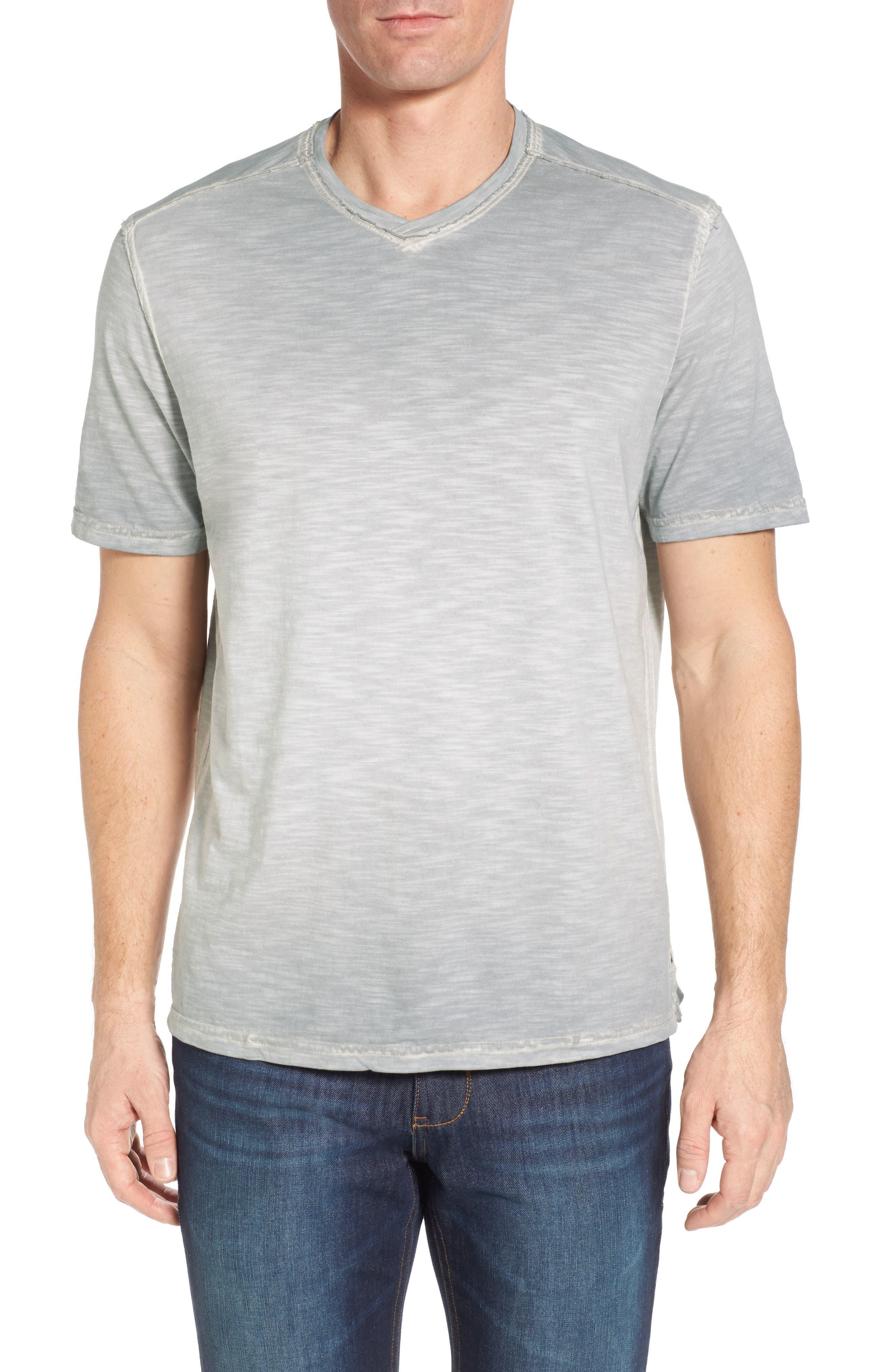 Suncoast Shores V-Neck T-Shirt,                             Main thumbnail 1, color,                             Bala Shark