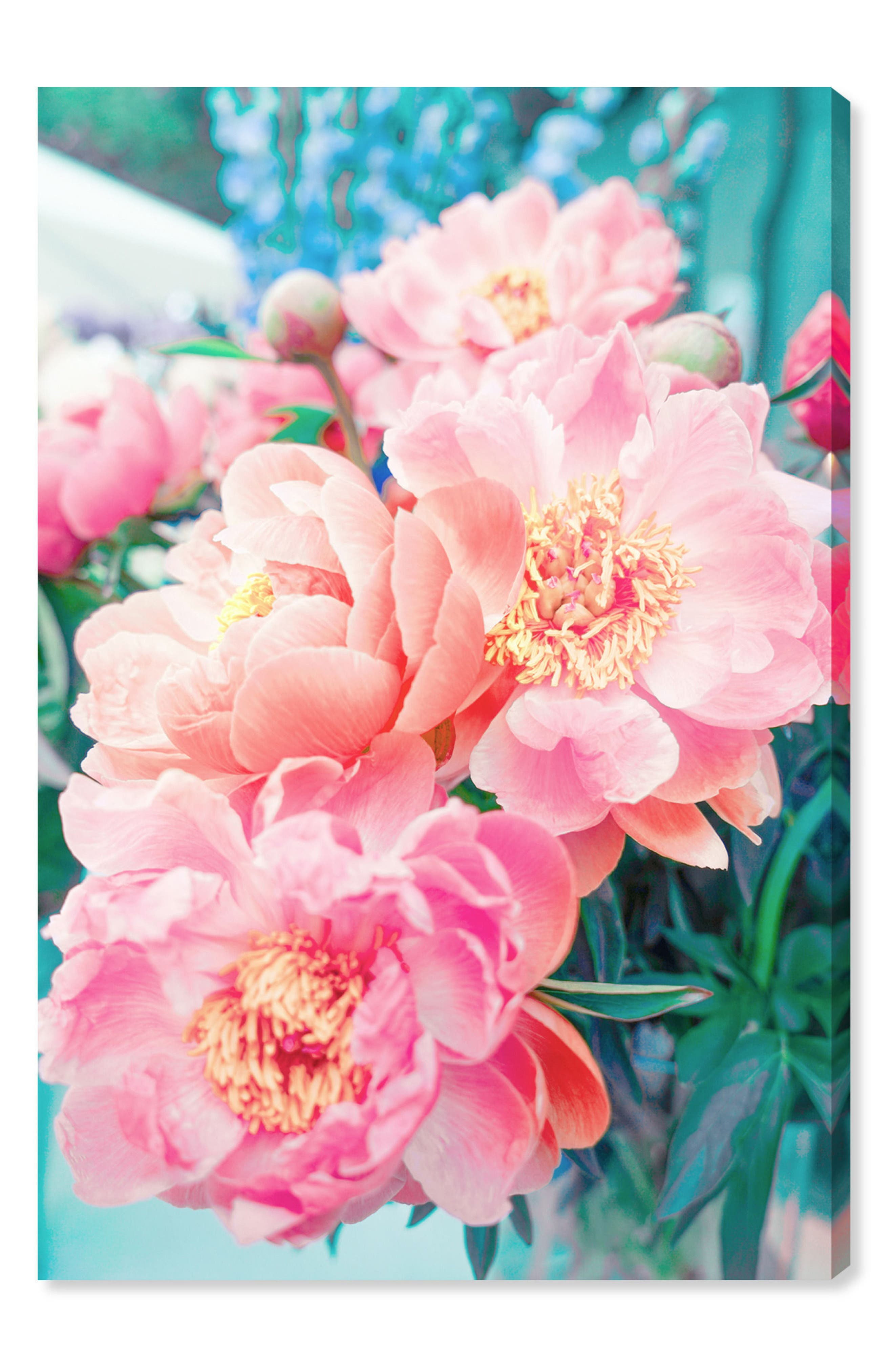Open Peonies Canvas Wall Art,                         Main,                         color, Pink
