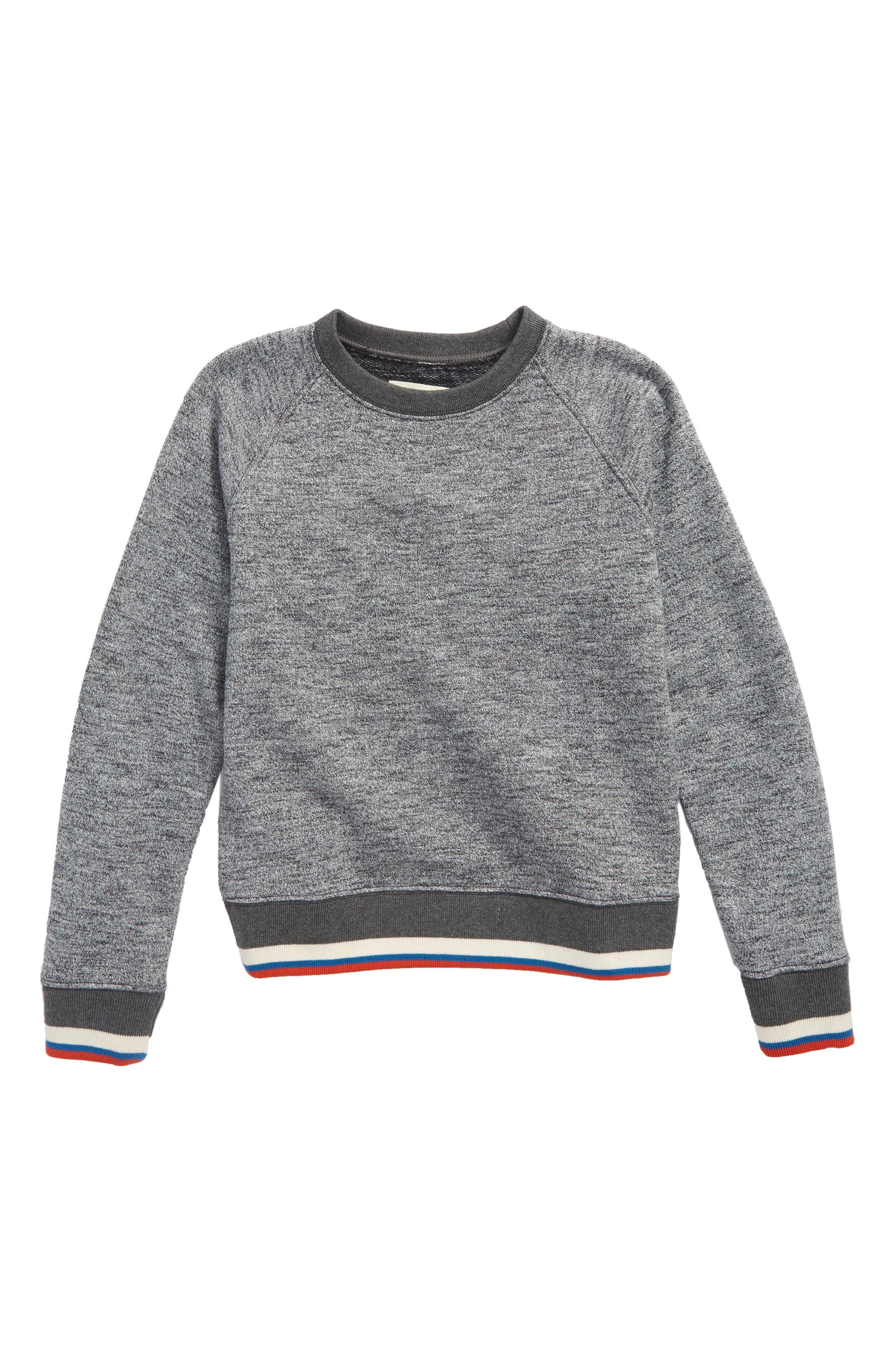Stripe Crewneck Sweatshirt,                             Main thumbnail 1, color,                             Grey Alloy