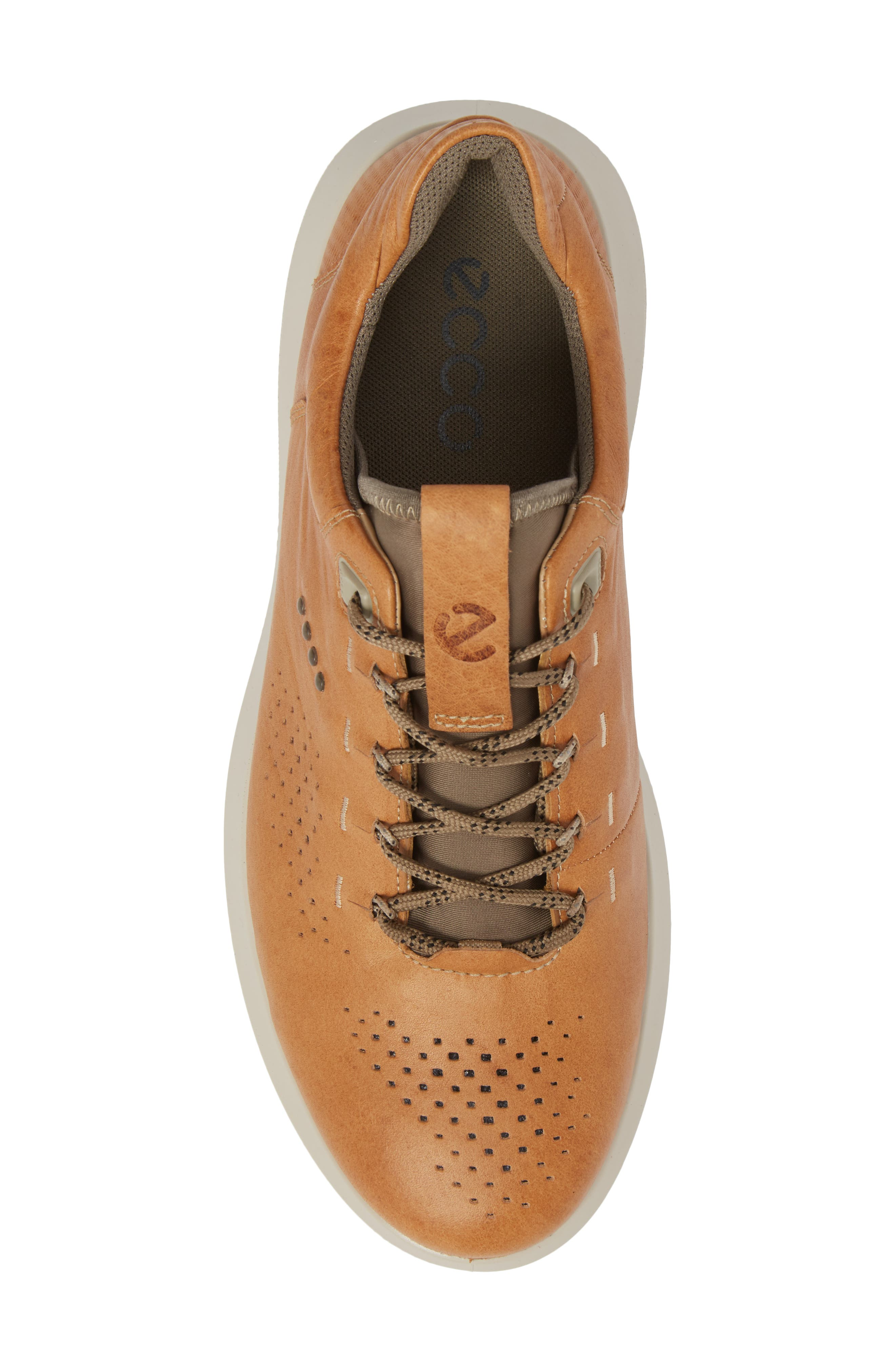 Scinapse Sneaker,                             Alternate thumbnail 5, color,                             Brown Leather