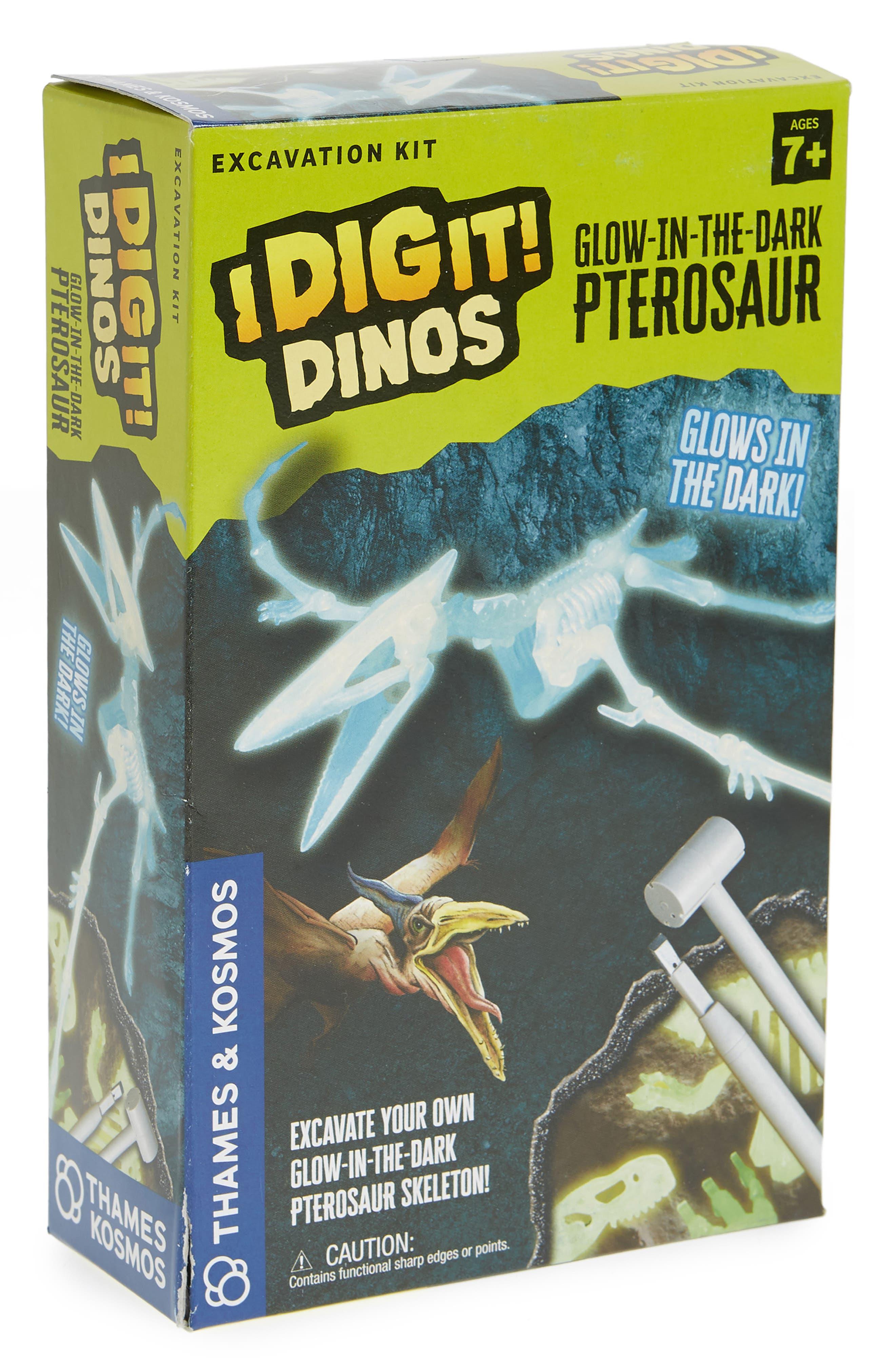 Thames & Kosmos I Dig It! 16-Piece Glow in the Dark Pterosaur Excavation Kit