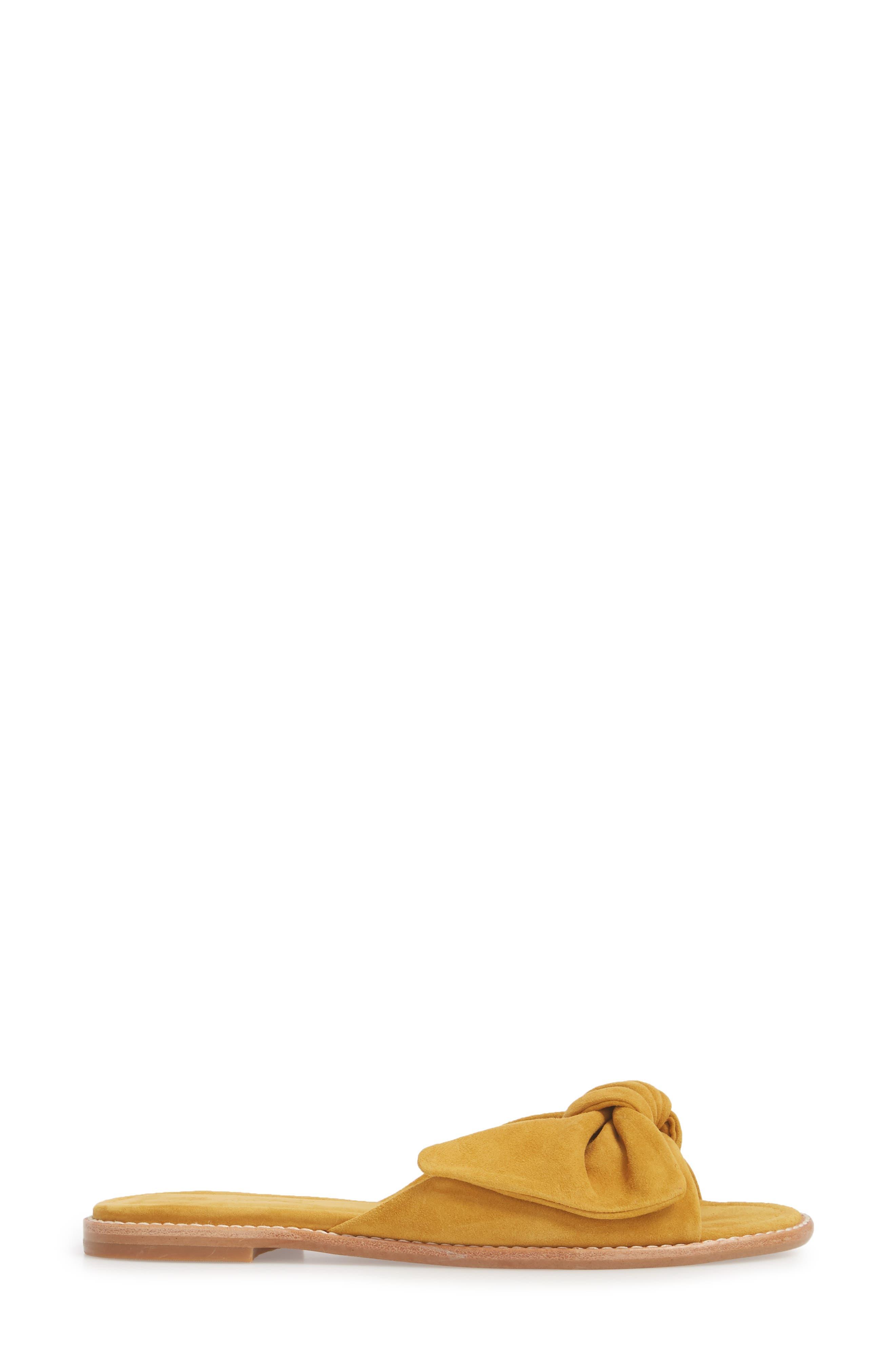 Naida Slide Sandal,                             Alternate thumbnail 3, color,                             Cider Leather