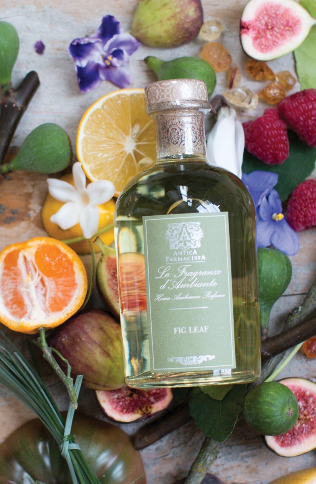 Alternate Image 2  - Antica Farmacista Fig Leaf Home Ambiance Perfume