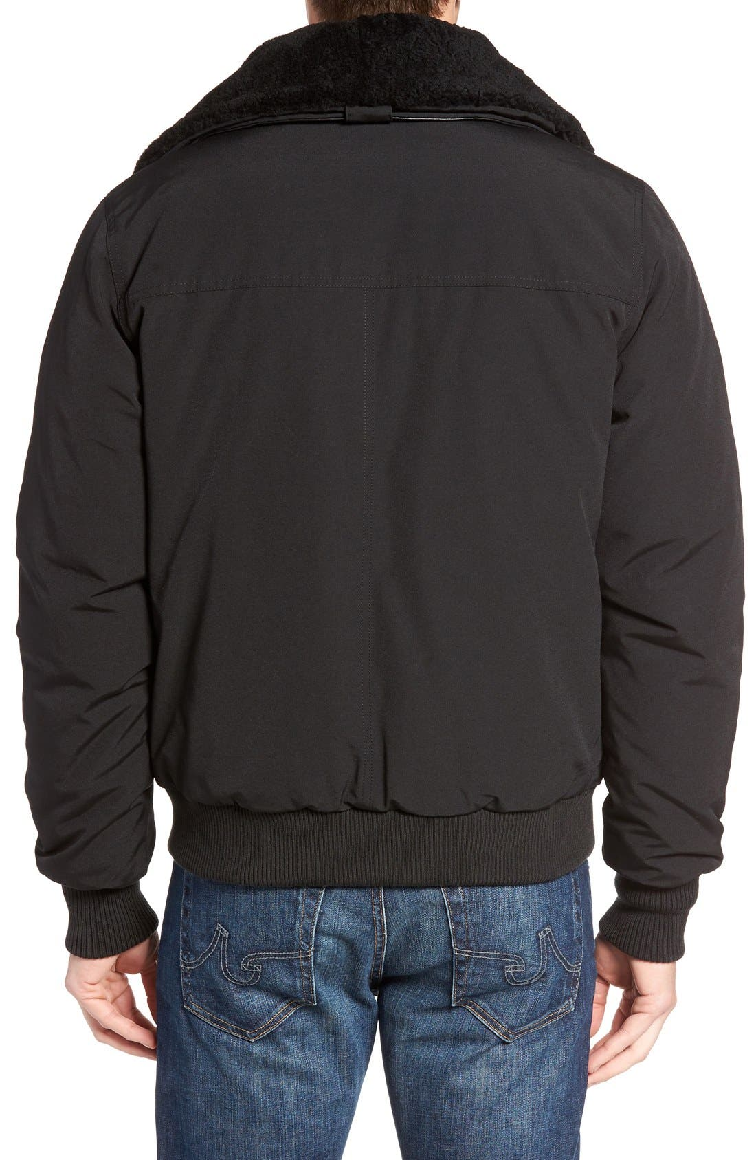 Bromley Down Bomber Jacket with Genuine Shearling Collar,                             Alternate thumbnail 2, color,                             Black