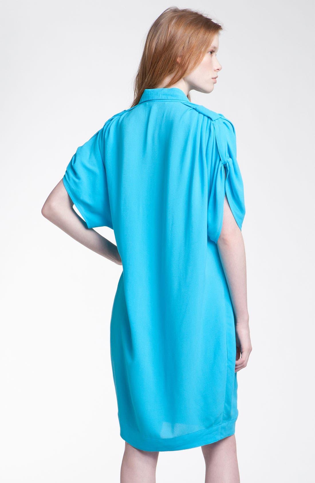 Alternate Image 2  - Diane von Furstenberg 'Karin' Oversized Shirtdress