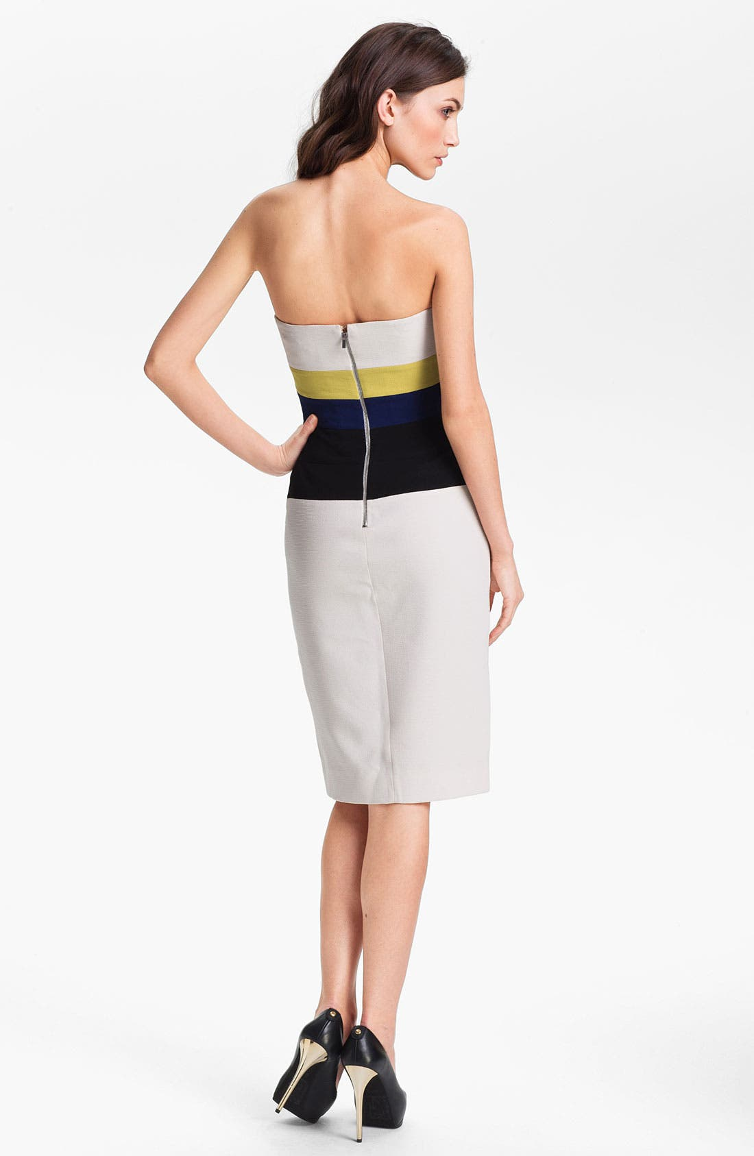Alternate Image 2  - BCBGMAXAZRIA Colorblocked Sheath Dress