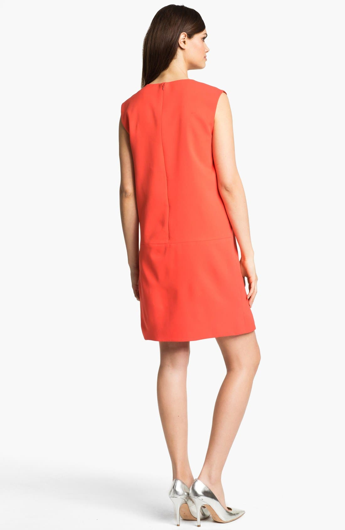 Alternate Image 2  - 4.collective Seamed Shift Dress