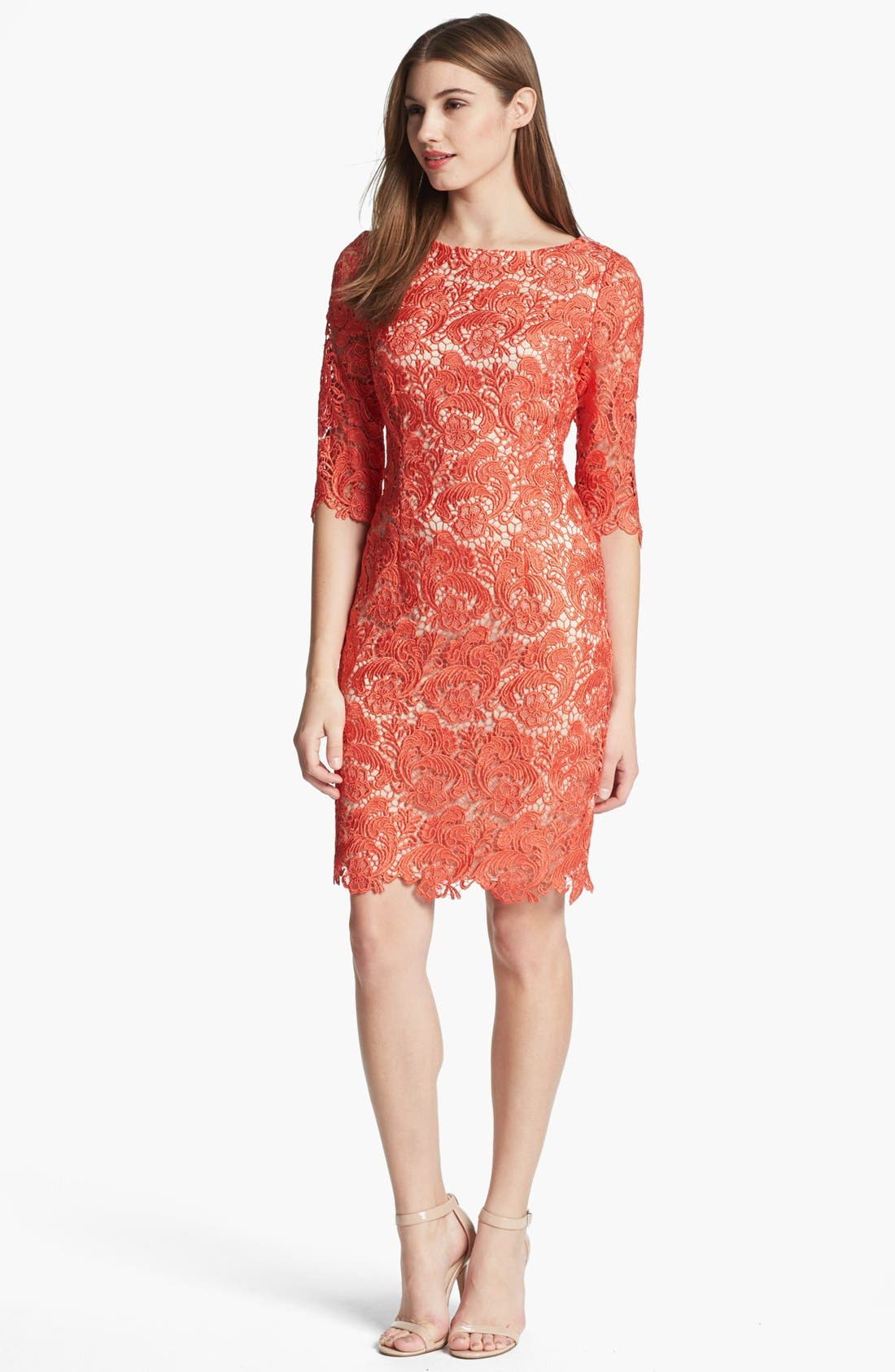 Alternate Image 1 Selected - Eliza J Embroidered Lace Overlay Sheath Dress (Regular & Petite)
