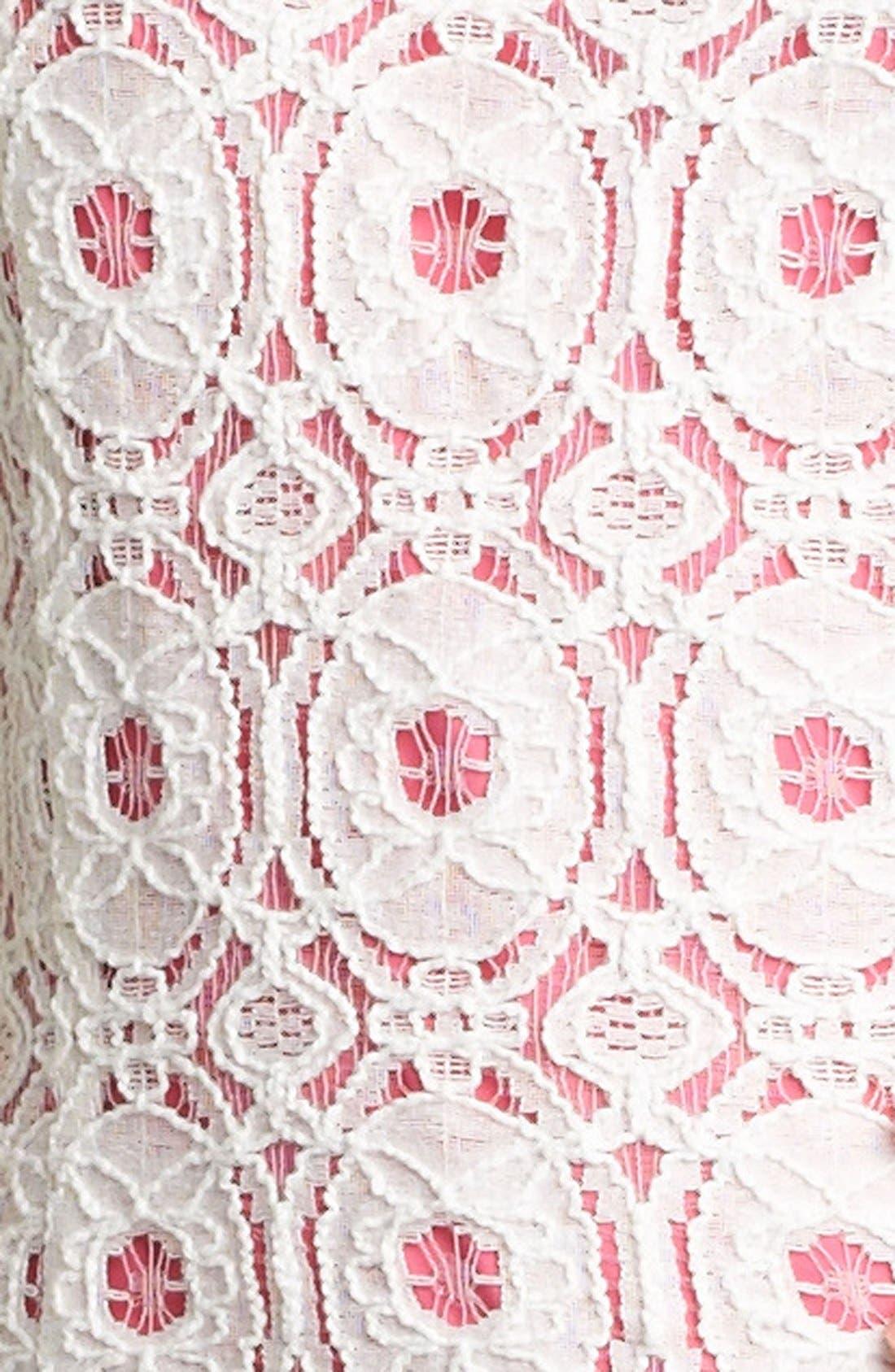 Alternate Image 3  - Kensie Lace Drop Waist Dress