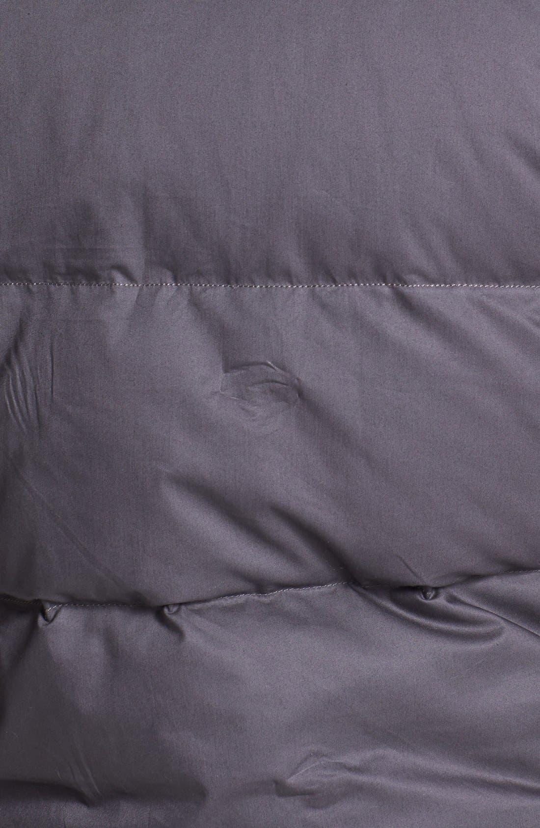 Alternate Image 3  - The North Face 'Lindero' Down Vest