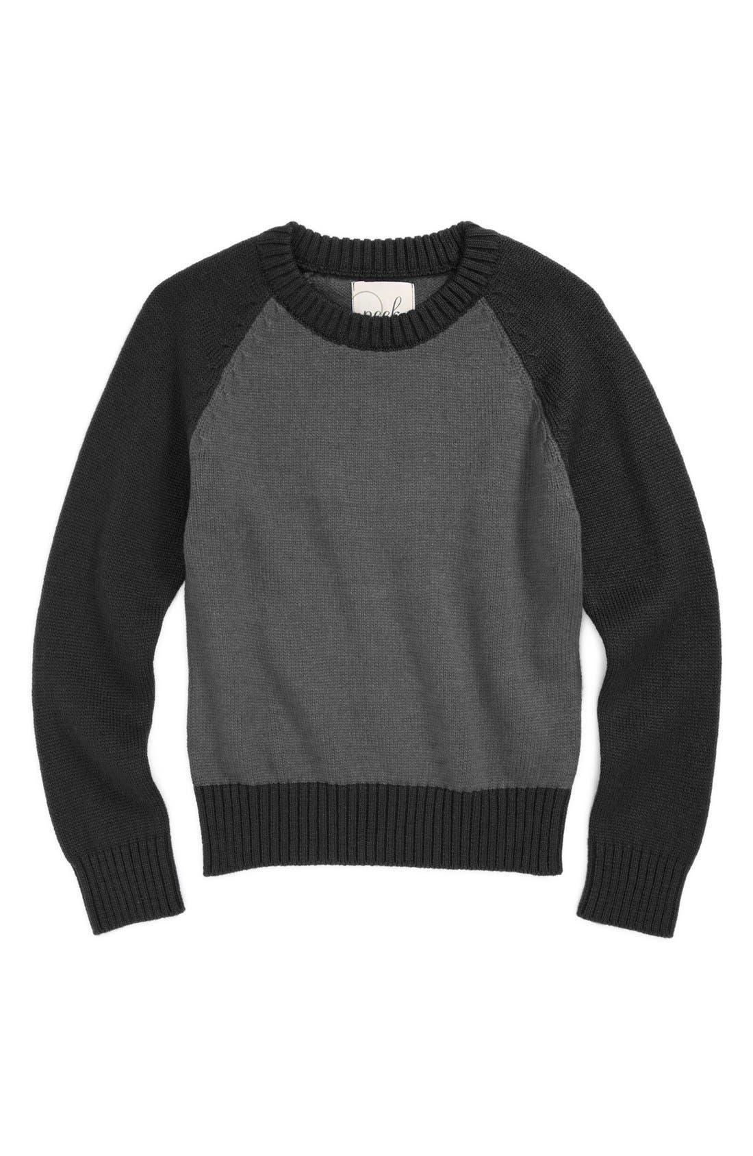 Alternate Image 1 Selected - Peek 'Clayton' Sweater (Toddler Boys, Little Boys & Big Boys)