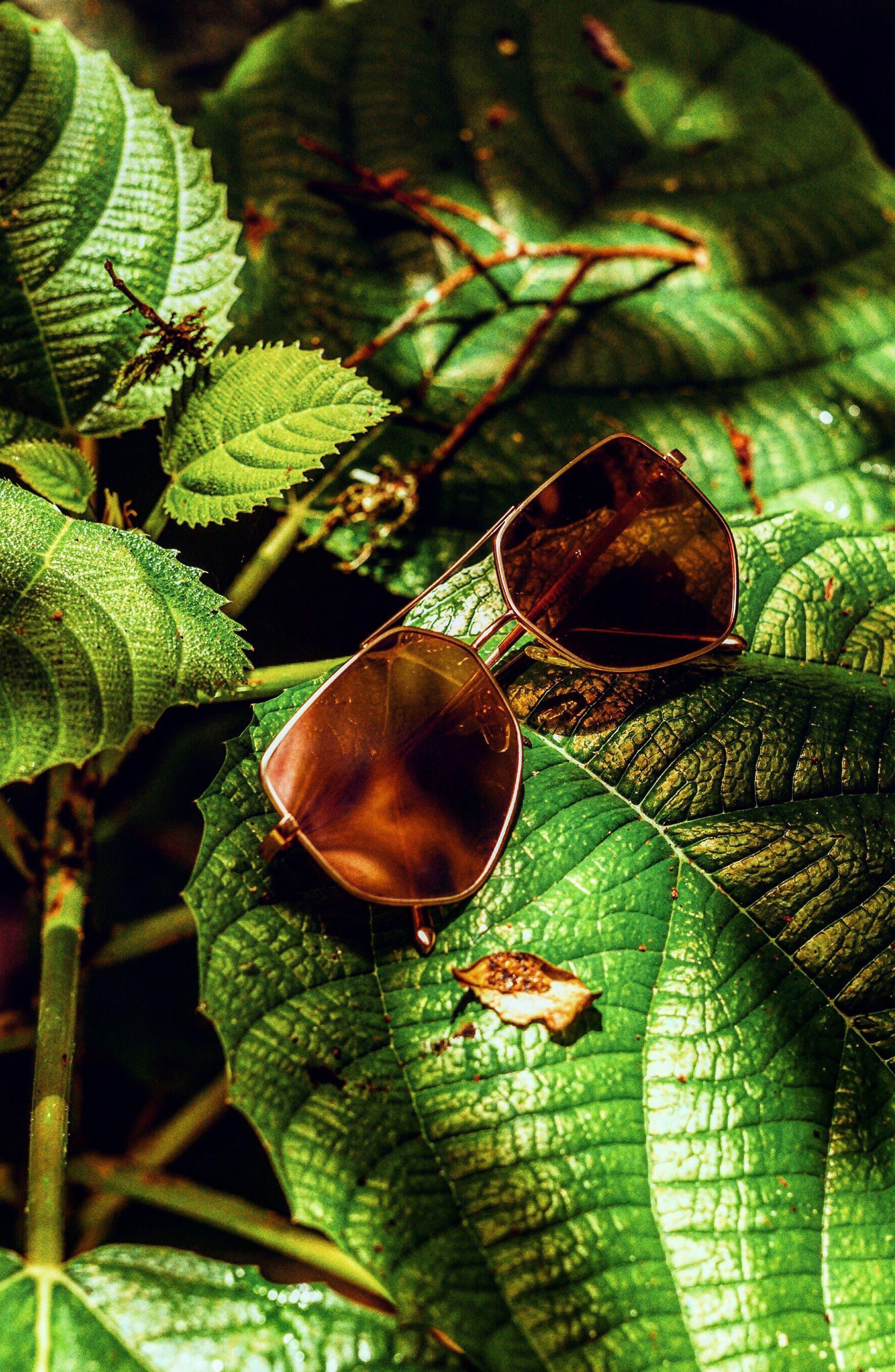 Alternate Image 5  - Bonnie Clyde Figueroa 58mm Sunglasses
