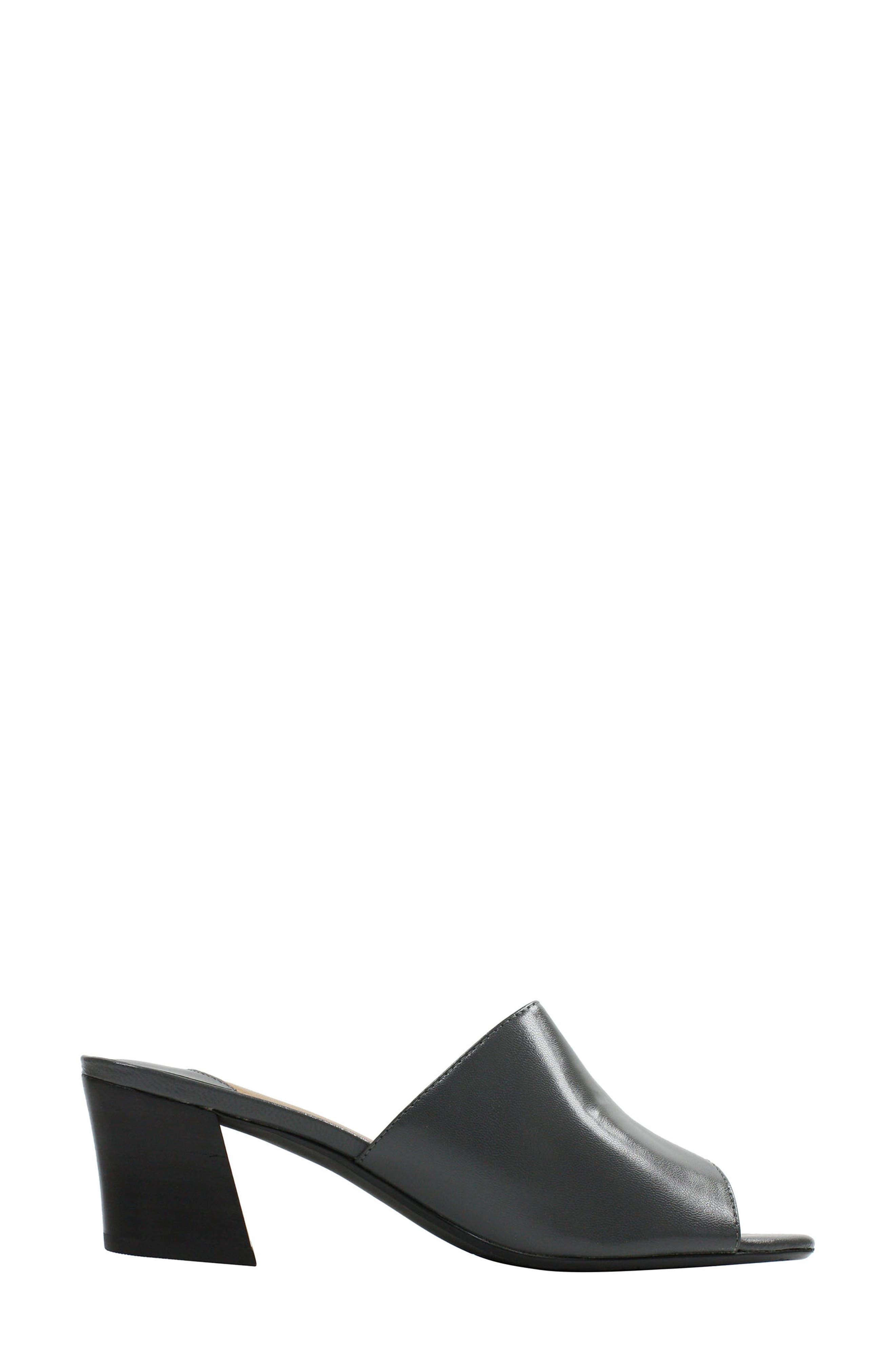 Alternate Image 2  - J. Reneé Maribe Monk Strap Slide Sandal (Women)