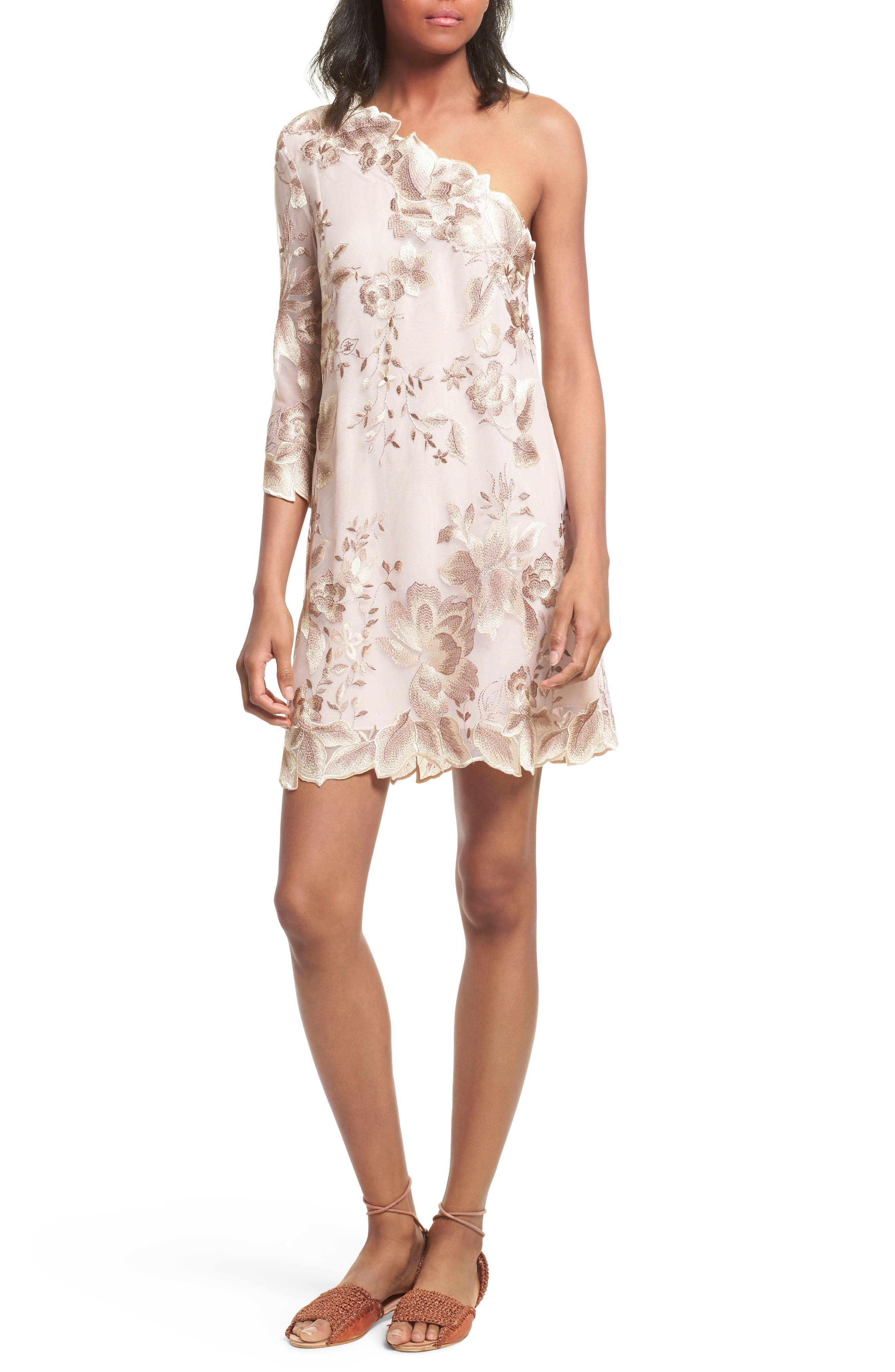Alternate Image 1 Selected - Free People Rosalie Embroidered Minidress
