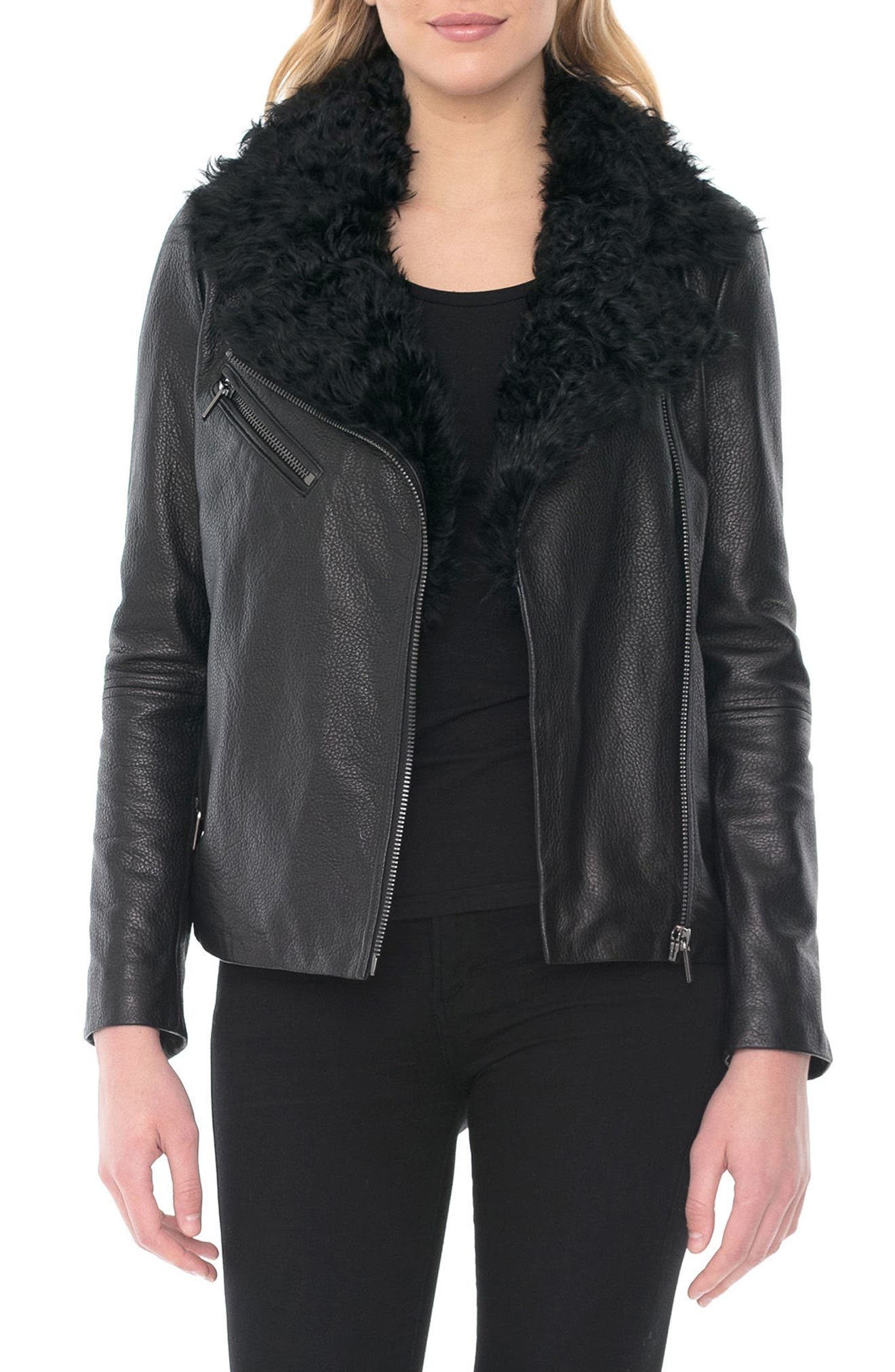Marianne Genuine Shearling Collar Moto Jacket,                         Main,                         color, Black