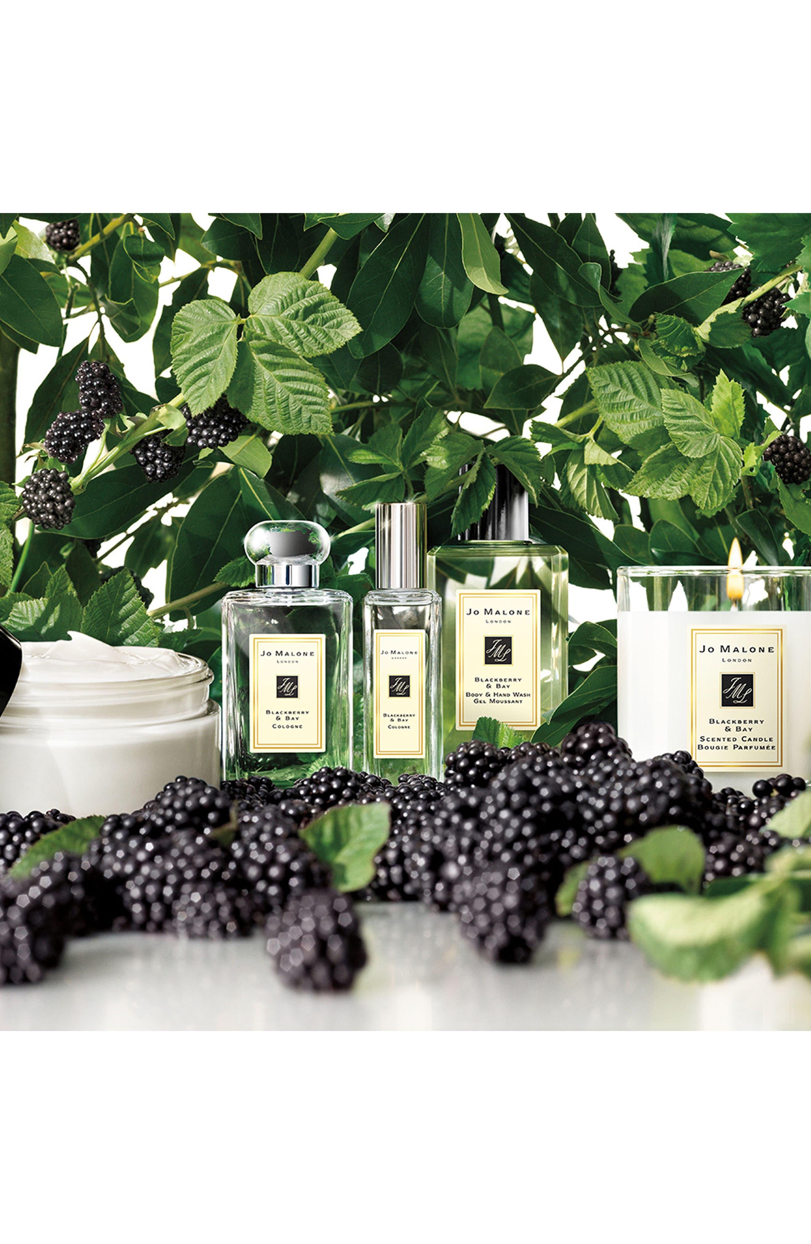 Alternate Image 3  - Jo Malone London™ Blackberry & Bay Bath Oil (8.5 oz.)