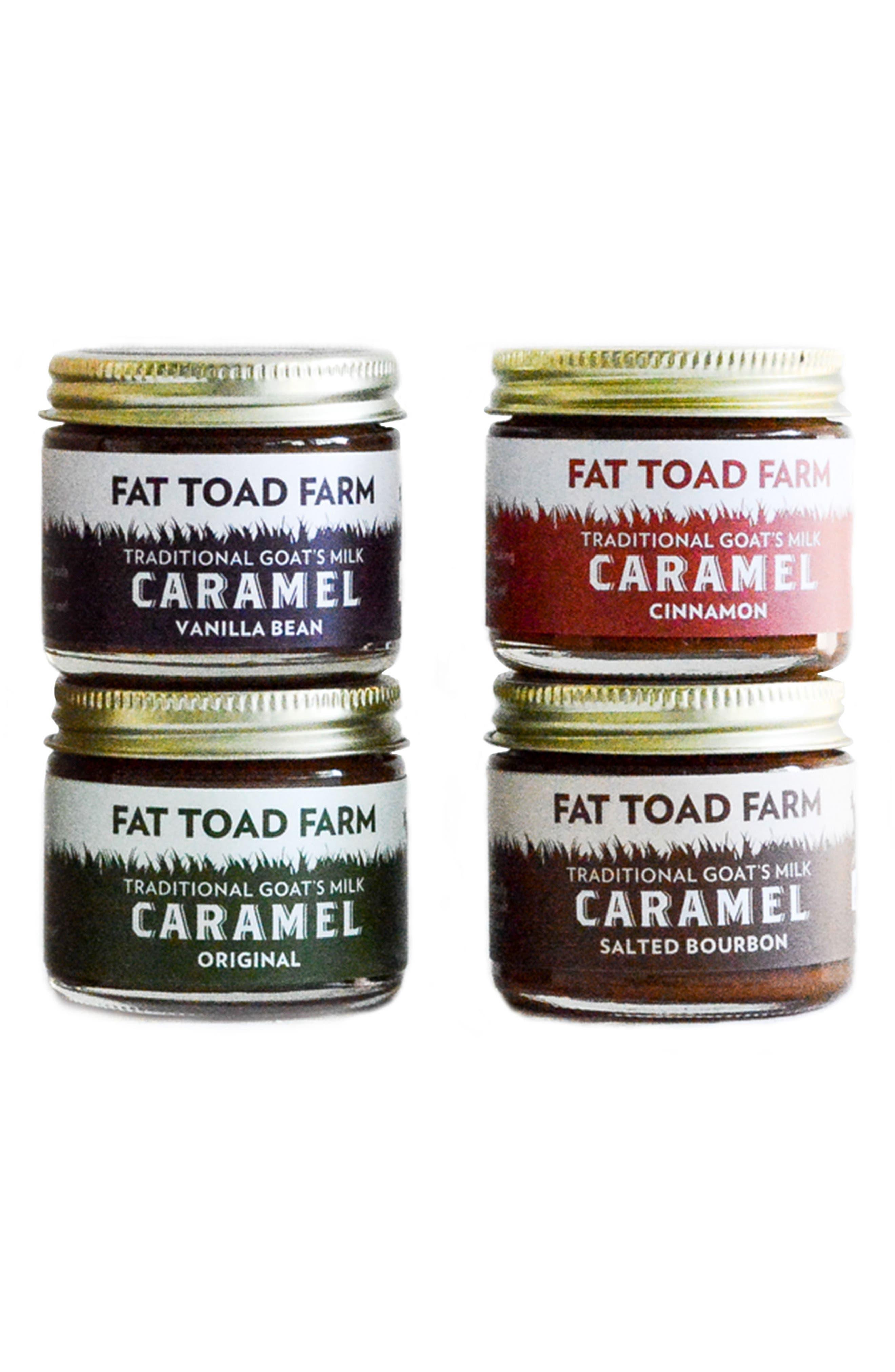 Alternate Image 1 Selected - Fat Toad Farm Petit Goat's Milk Caramel Quartet