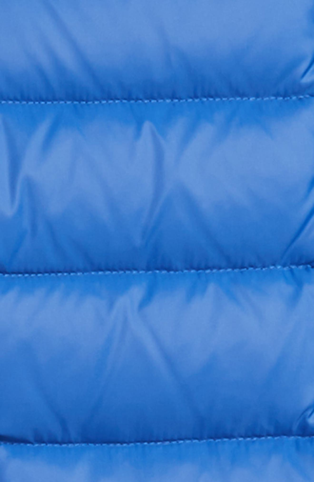 Water Resistant Hooded Down Jacket,                             Alternate thumbnail 2, color,                             Blue