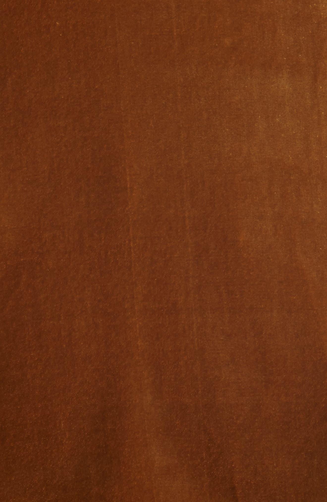Alternate Image 5  - Veronica Beard Sebastian Velvet Bustier Camisole