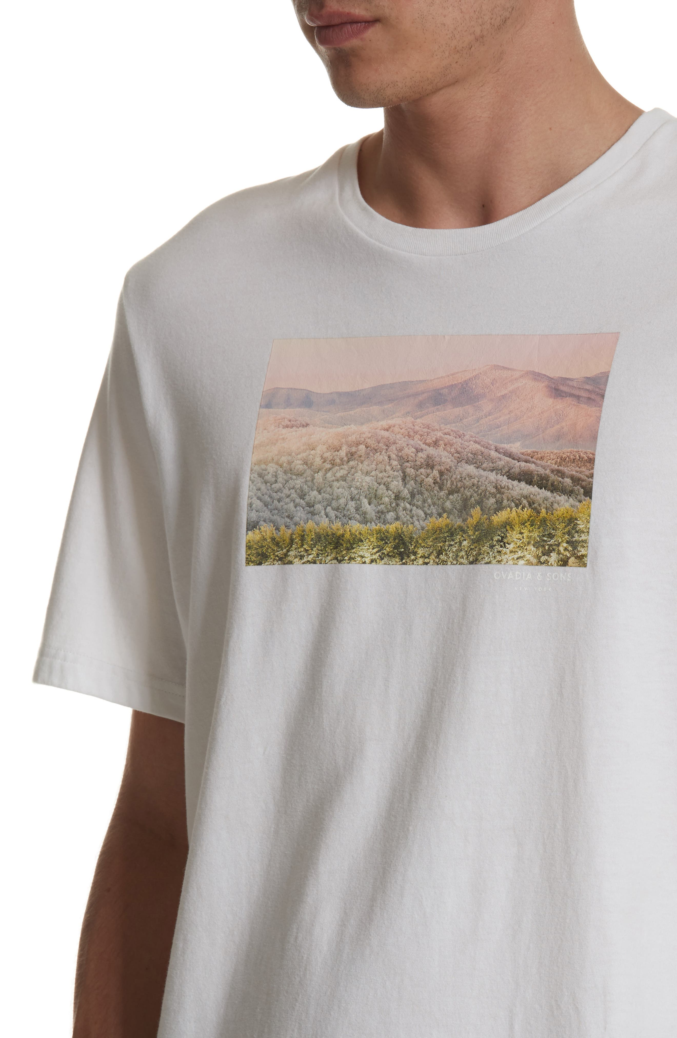 Alternate Image 4  - OVADIA & SONS Appalachian Winter Graphic T-Shirt