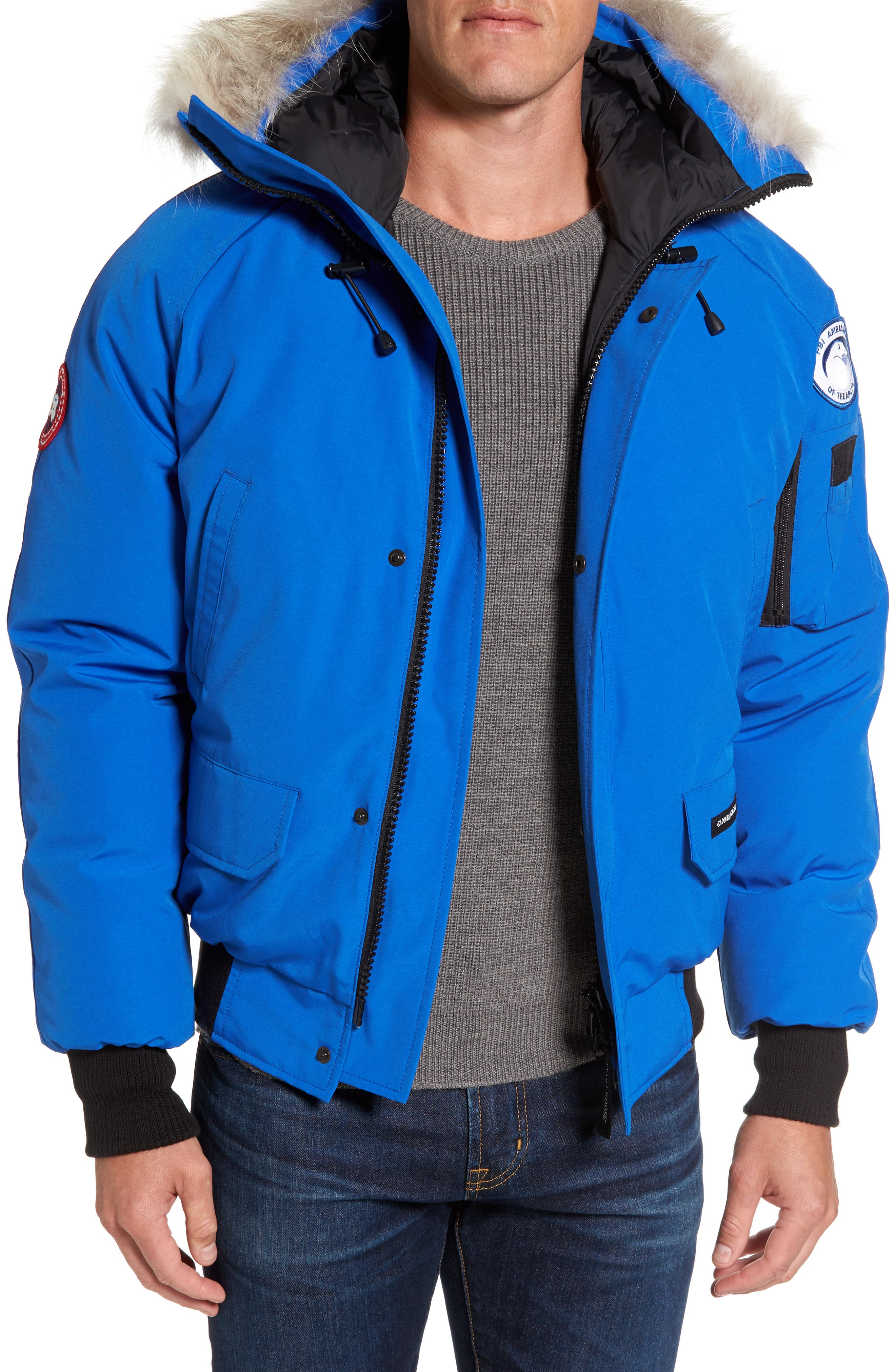 PBI Chilliwack Down Bomber Jacket with Genuine Coyote Trim,                         Main,                         color, Royal Blue