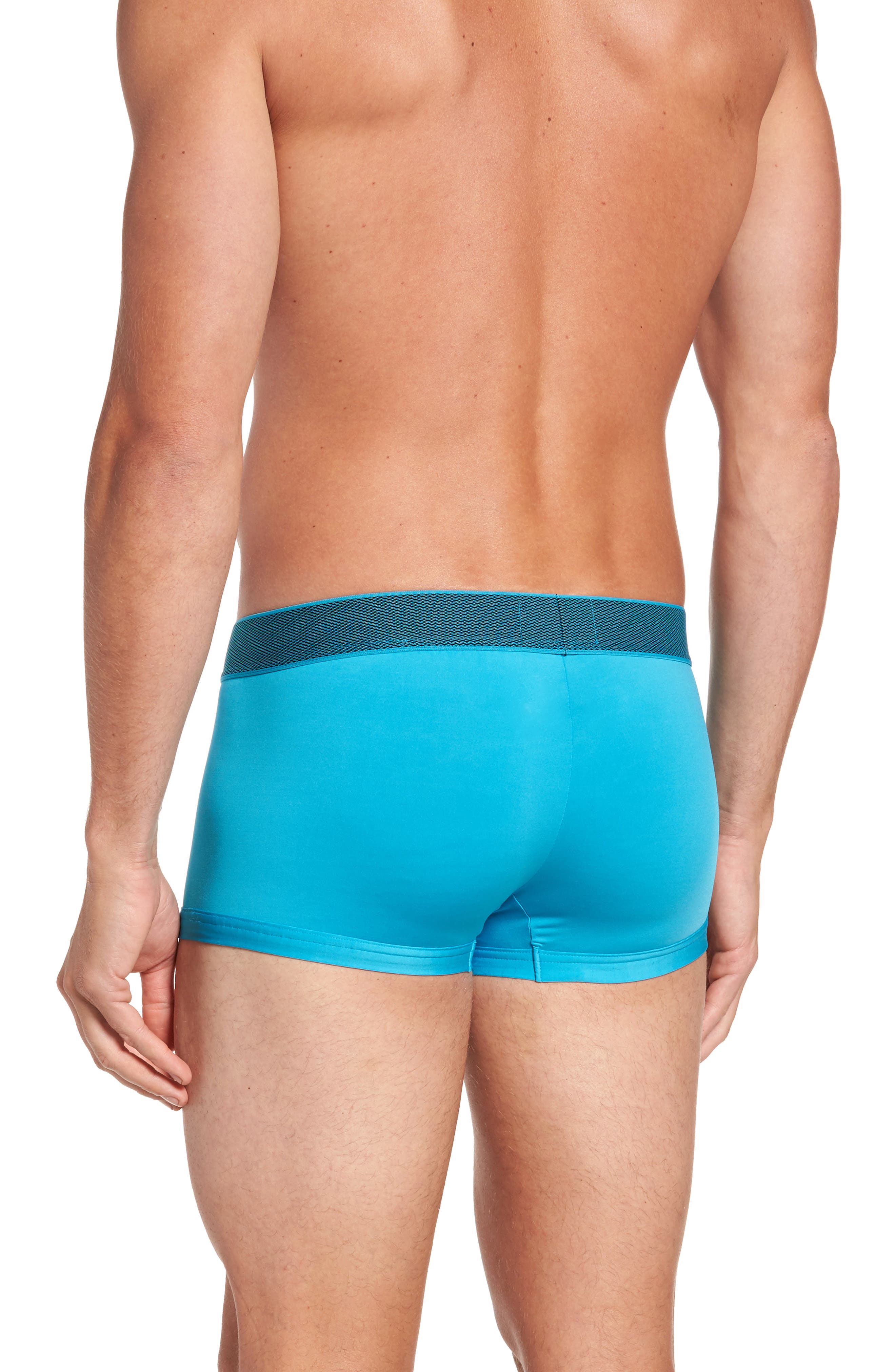 Stretch Knit Low Rise Trunks,                             Alternate thumbnail 2, color,                             Leica
