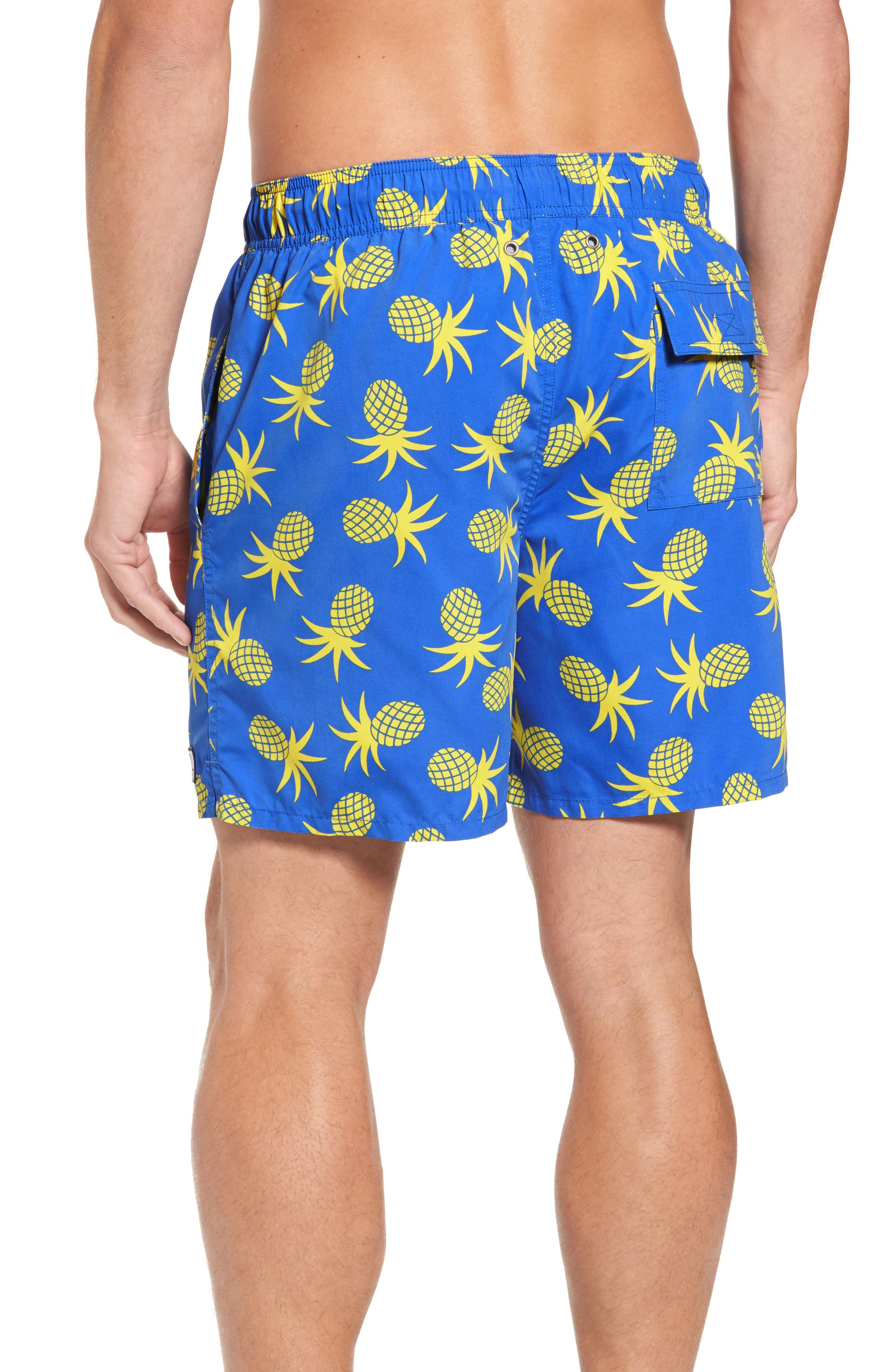 Alternate Image 2  - Tom & Teddy Pineapple Swim Trunks