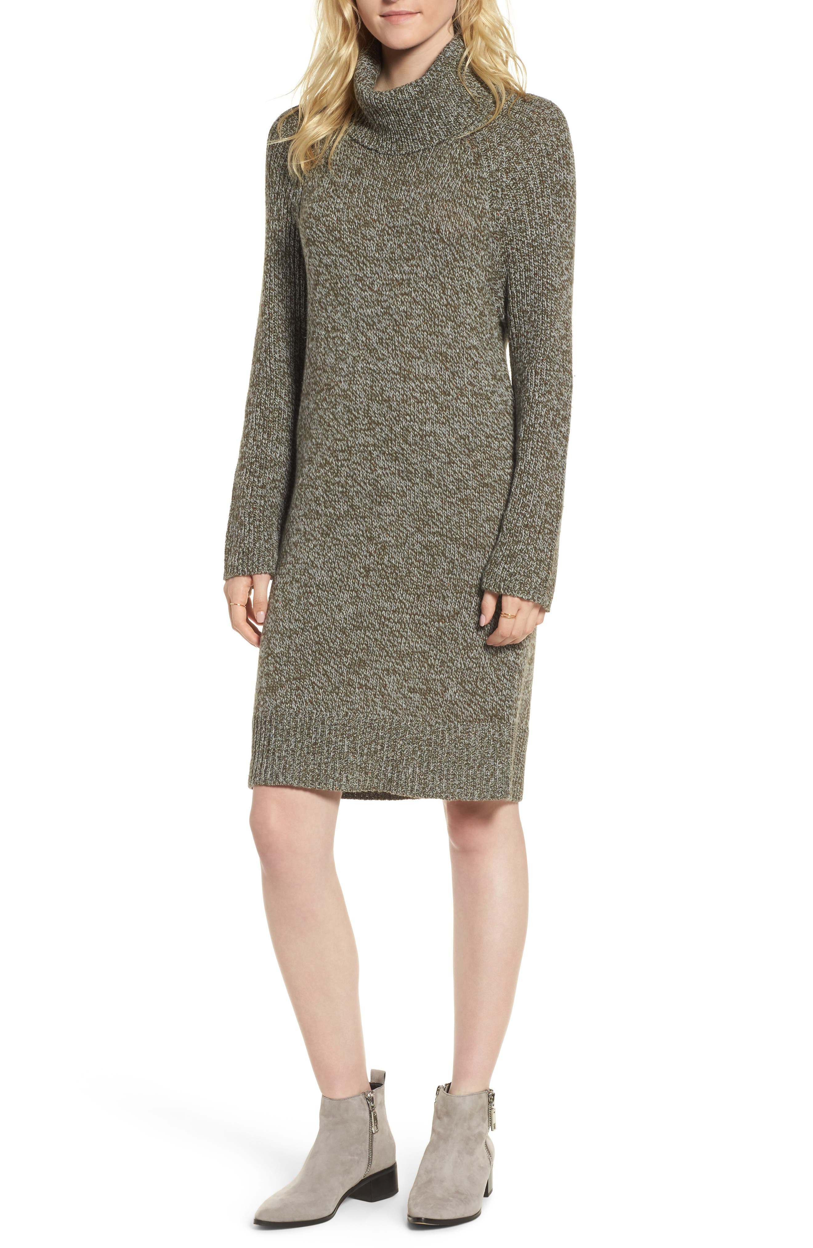 Treasure&Bond Turtleneck Sweater Dress