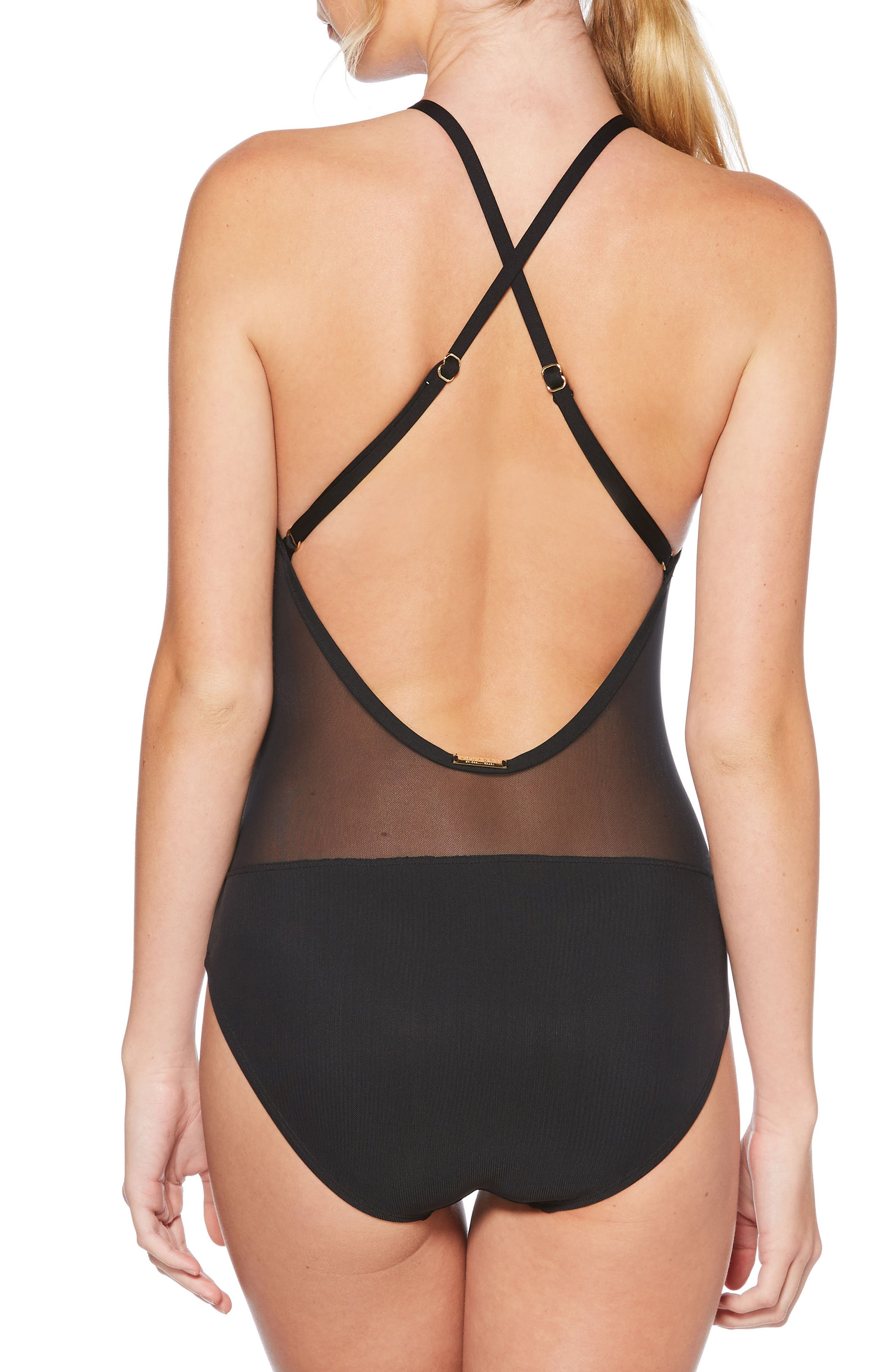 Alternate Image 2  - Laundry by Shelli Segal Embroidered Mesh One-Piece Swimsuit