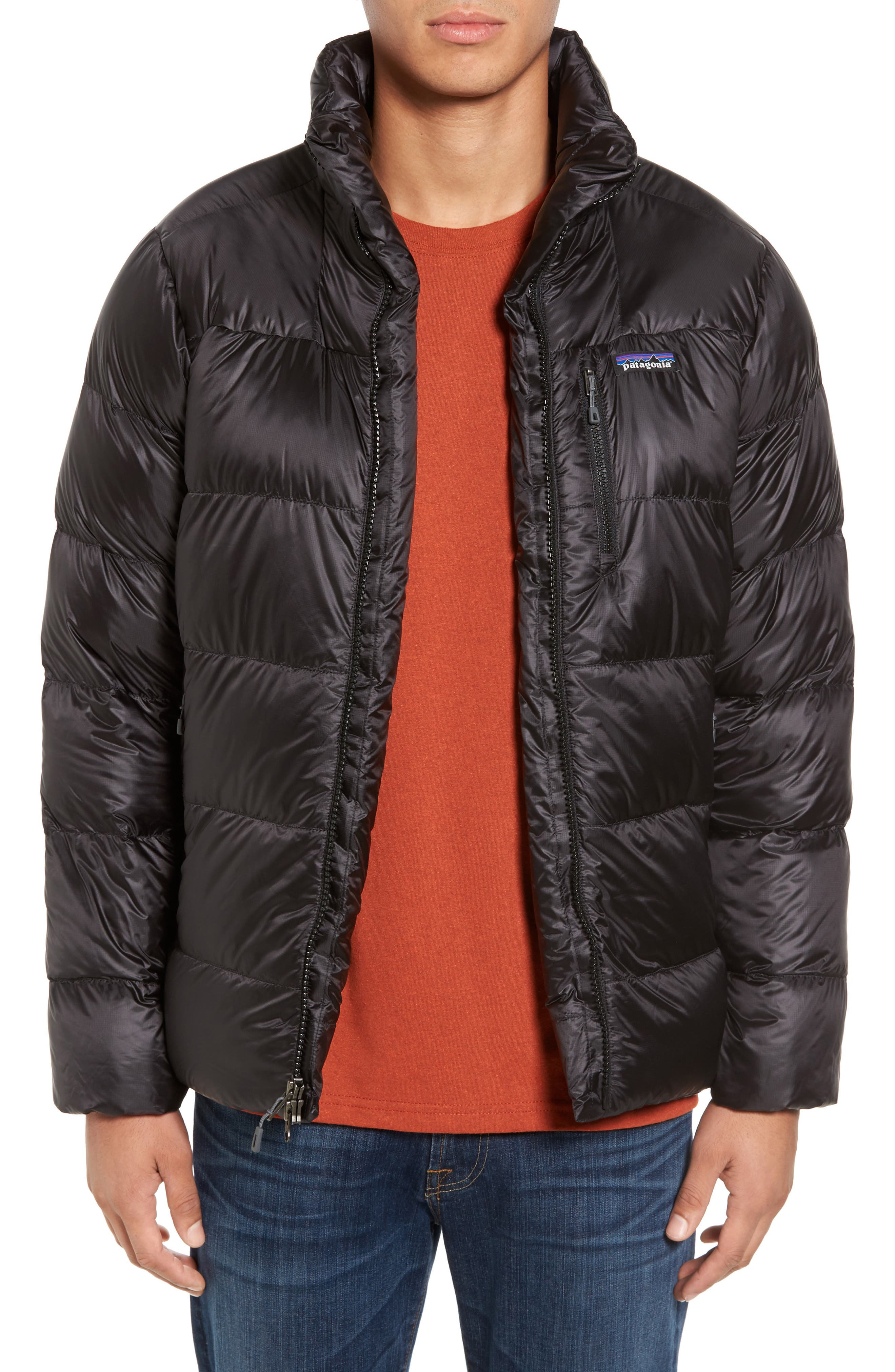 Fitz Roy Water Repellent 800-Fill-Power Down Parka,                         Main,                         color, Black