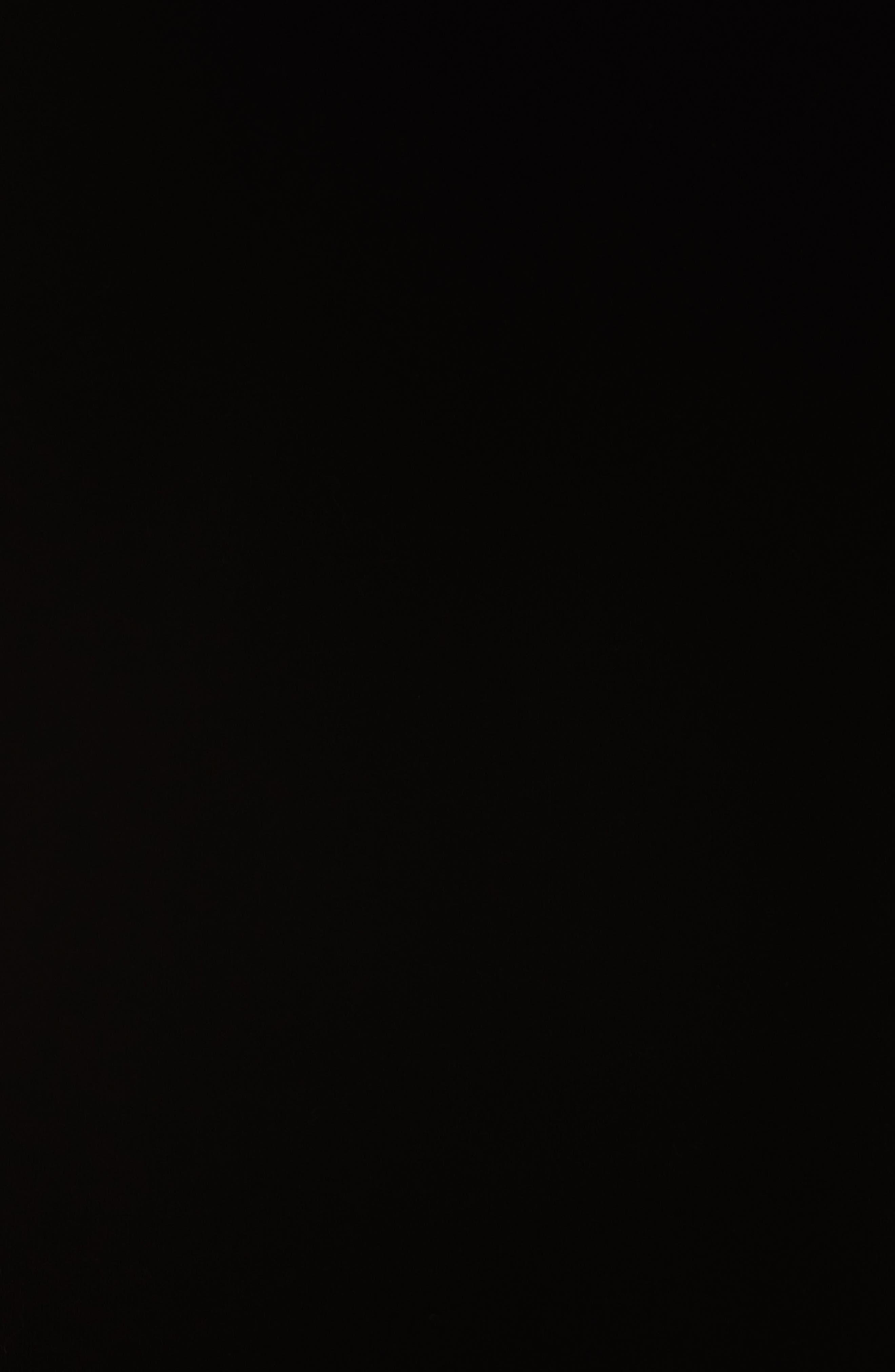 Alternate Image 5  - Helmut Lang Re-Edition Stud Collar Hoodie