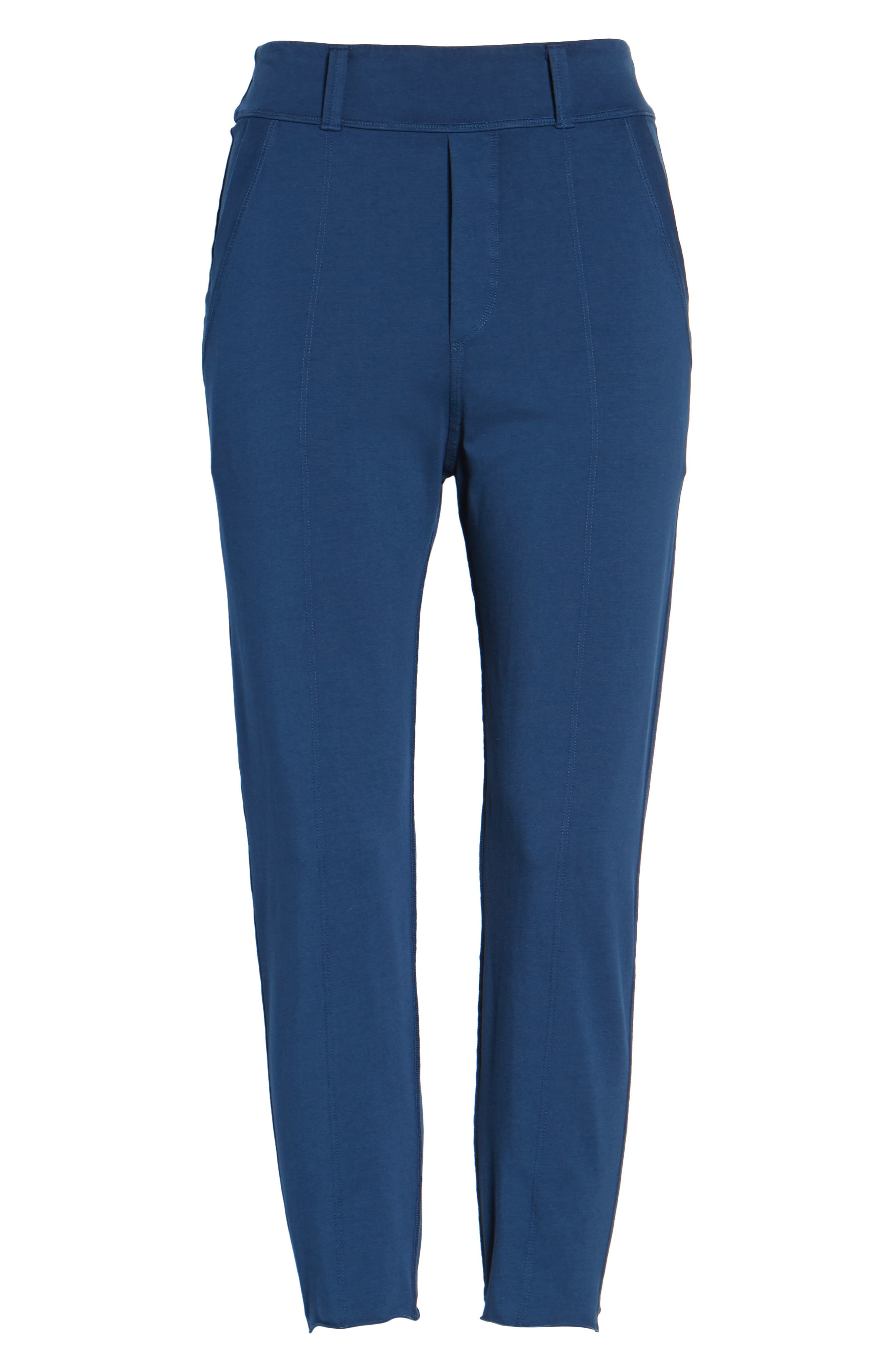 The Trouser Knit Pants,                             Alternate thumbnail 6, color,                             Blazer