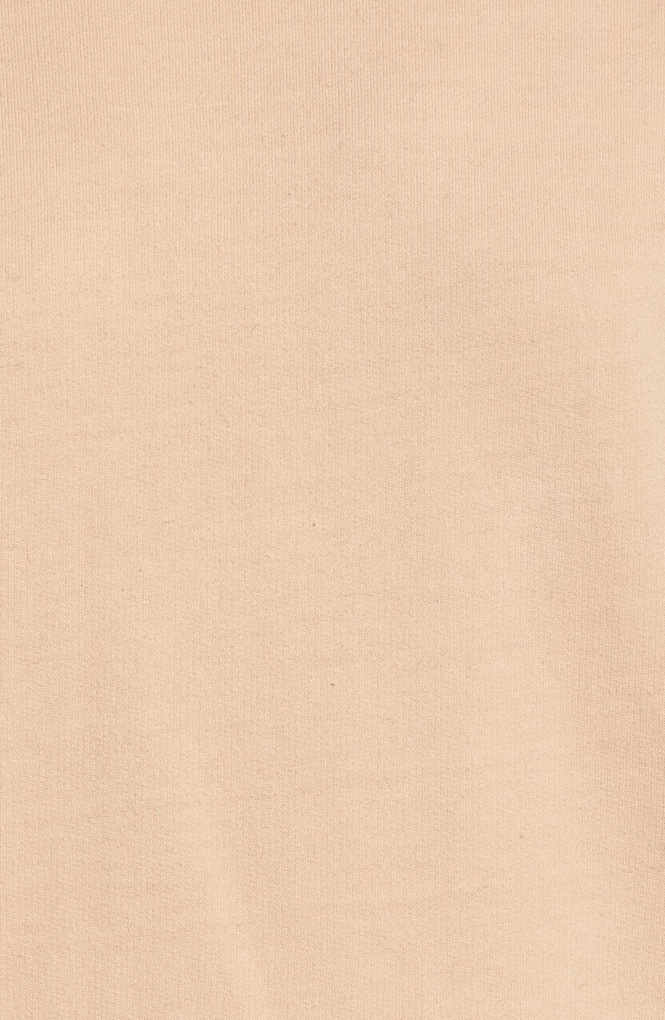 Sweatshirt Dress,                             Alternate thumbnail 5, color,                             Nude