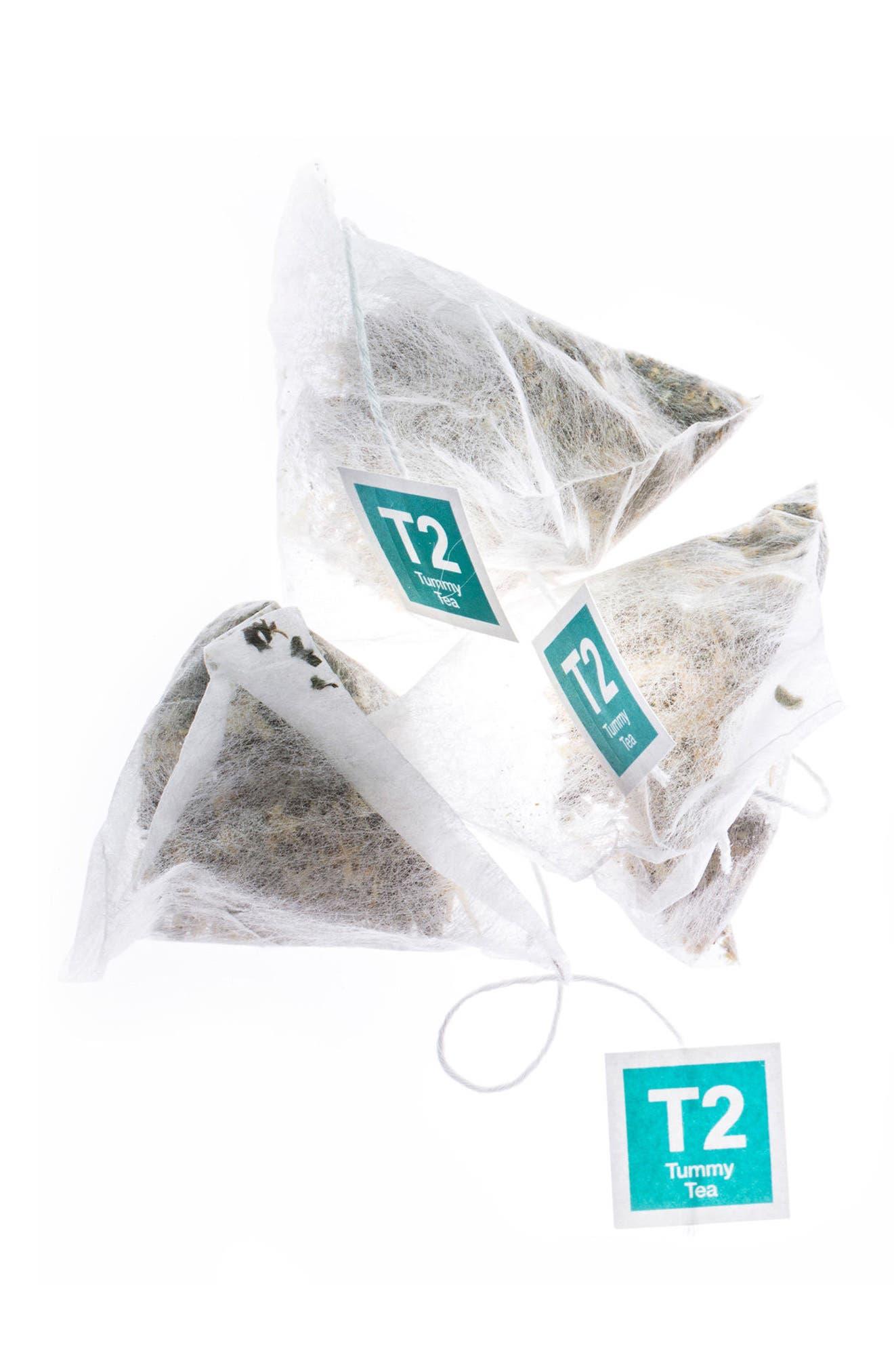 Alternate Image 2  - T2 Tea Tummy Tea Gift Box