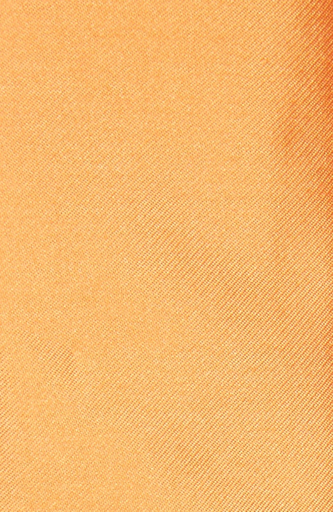 Alternate Image 5  - Sachin & Babi Noir Marmara Ballgown