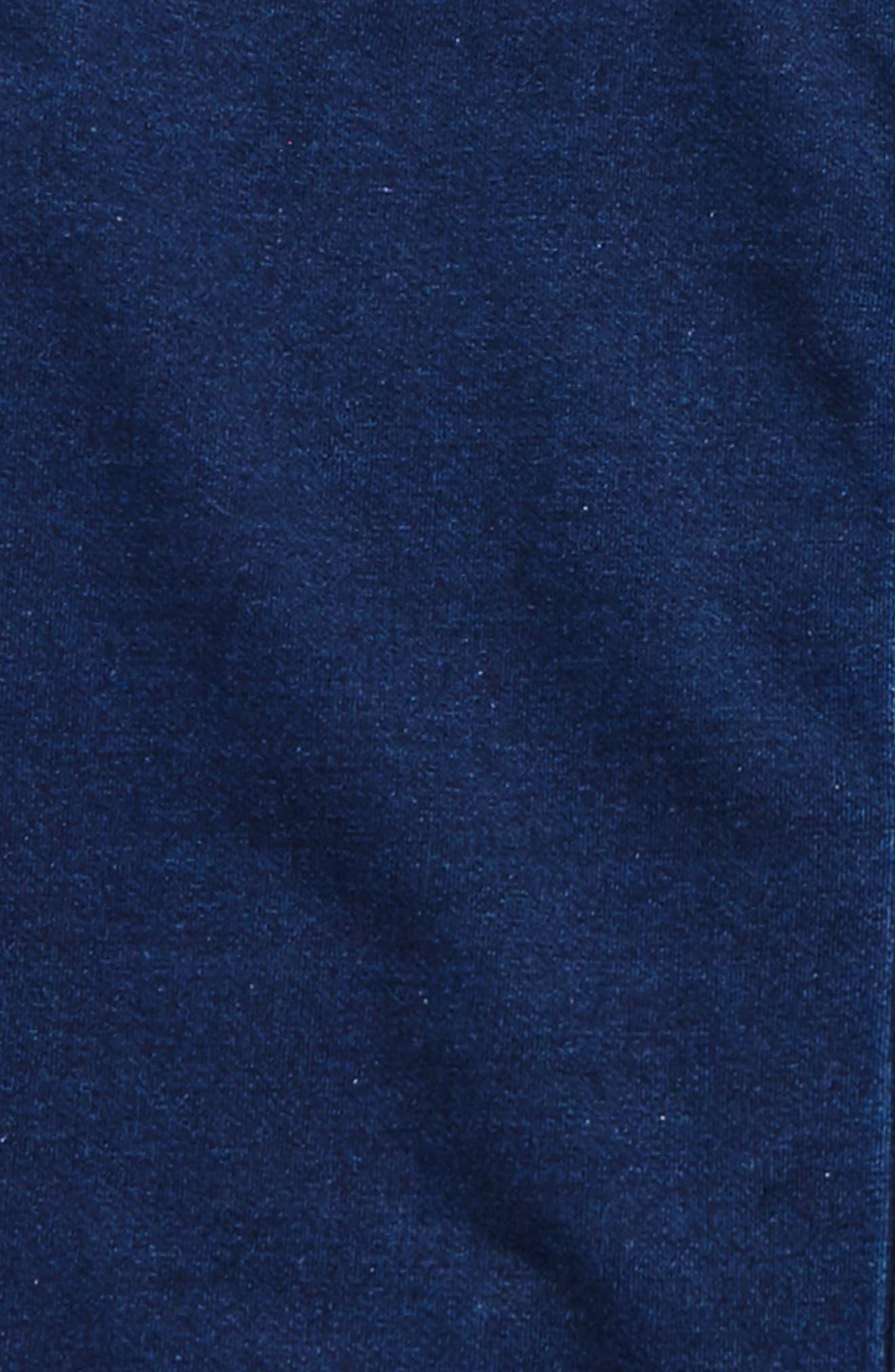 AG Jersey Fleece Bomber Jacket,                             Alternate thumbnail 2, color,                             Indigo