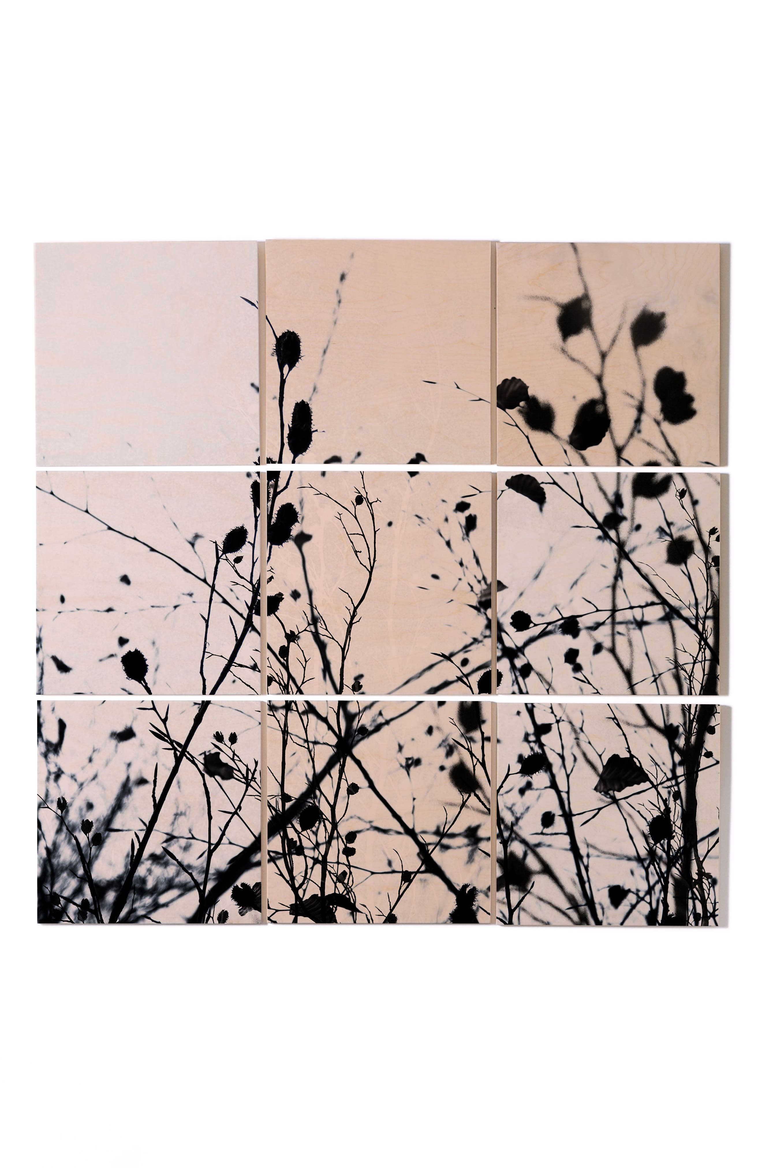 Branches 9-Piece Wood Wall Mural,                         Main,                         color, Black/ White