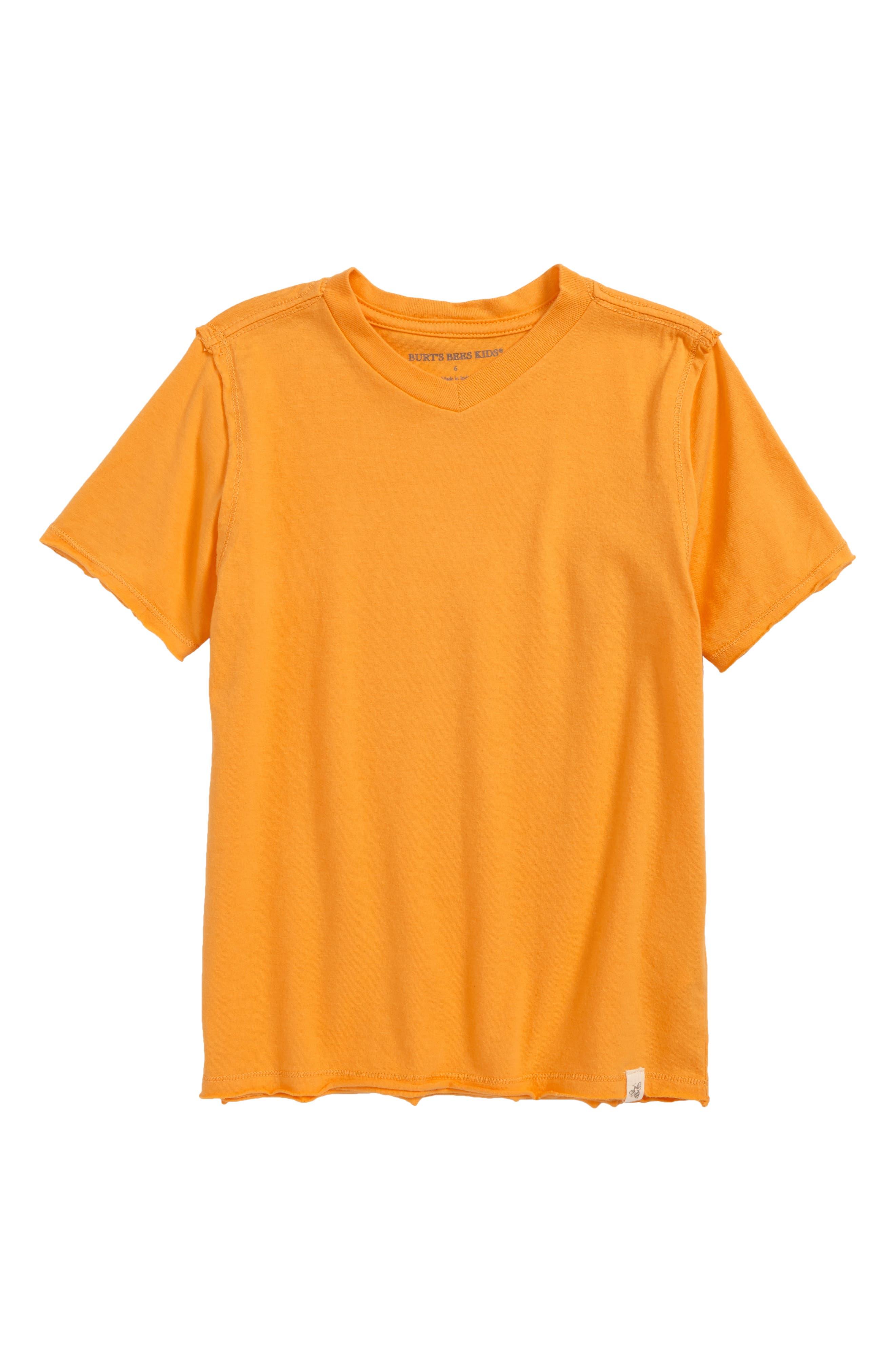Alternate Image 1 Selected - Burt's Bees Baby V-Neck Organic Cotton T-Shirt (Toddler Boys & Little Boys)