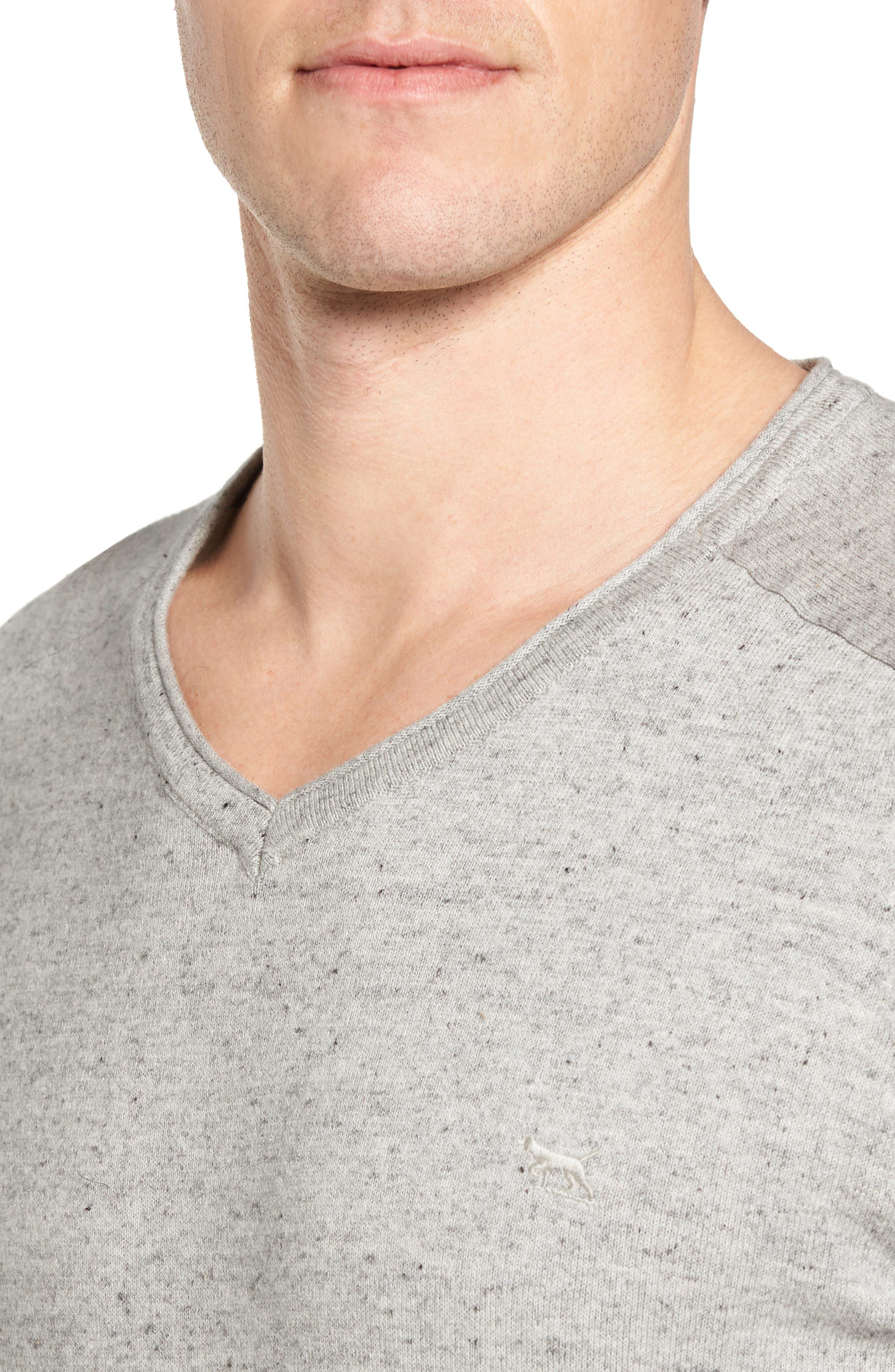 Arbors Cotton V-Neck Sweater,                             Alternate thumbnail 4, color,                             Oatmeal