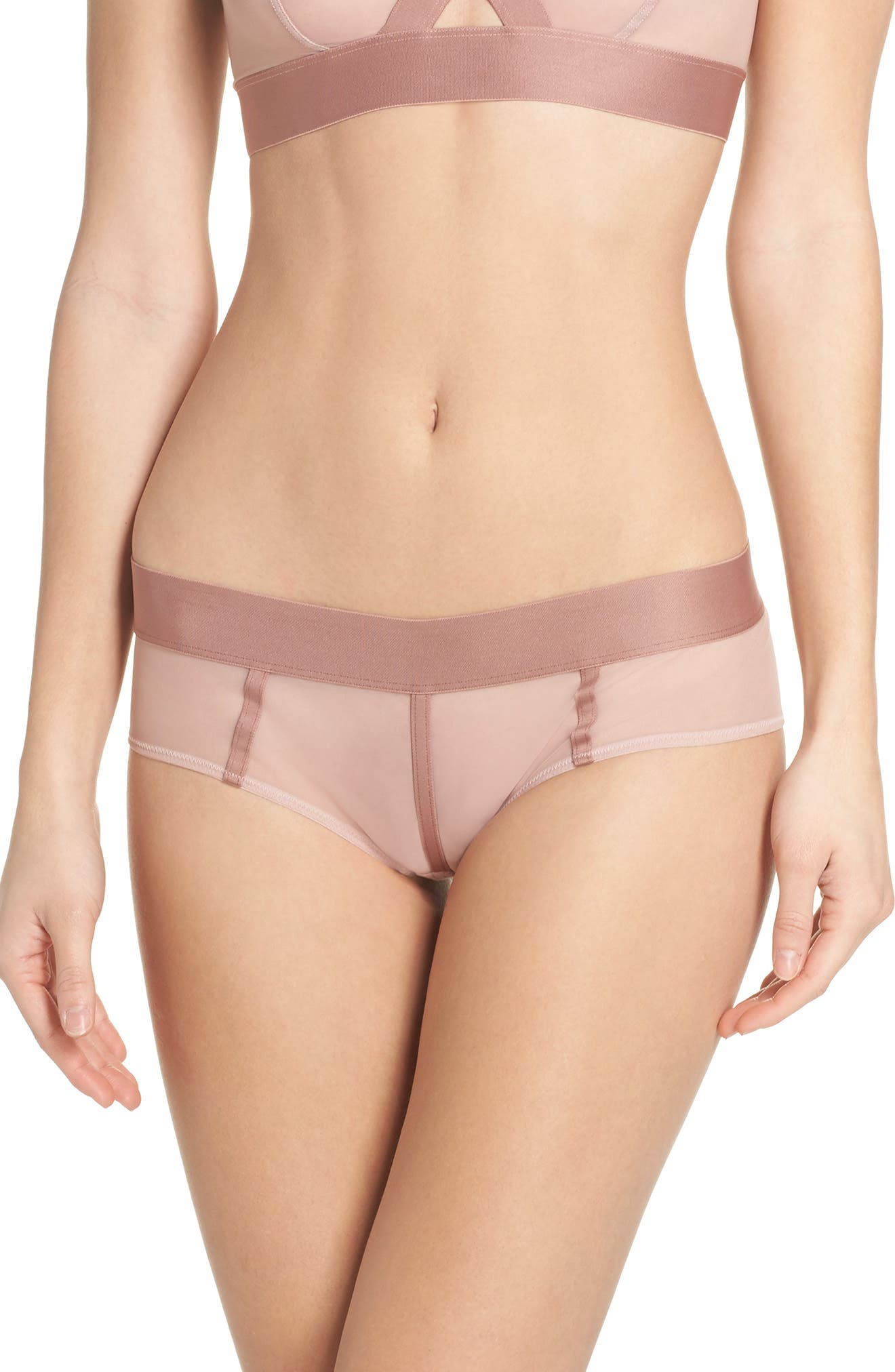 Sheers Hipster Panties,                         Main,                         color, Shell/Rouge