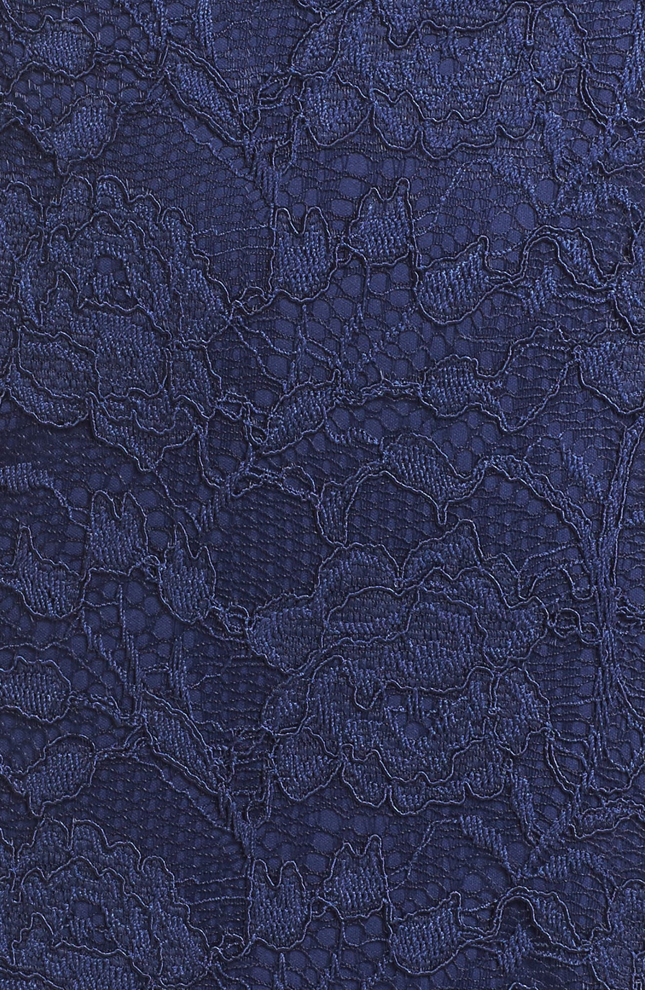 Alternate Image 5  - Adrianna Papell Rose Lace Sheath Dress