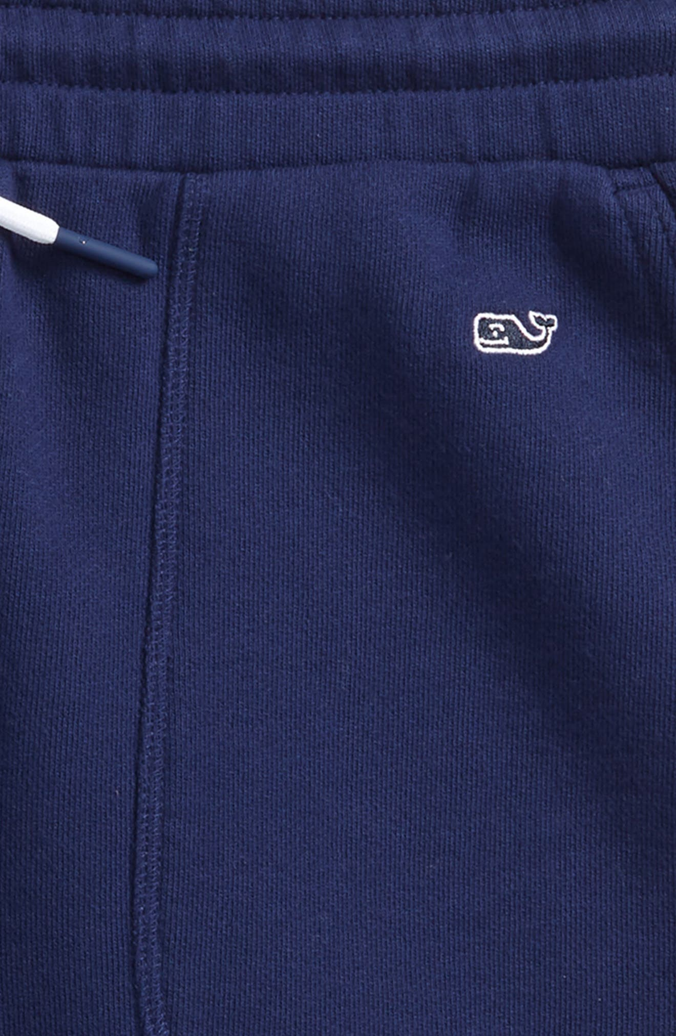 Garment Dyed Knit Shorts,                             Alternate thumbnail 2, color,                             Deep Bay