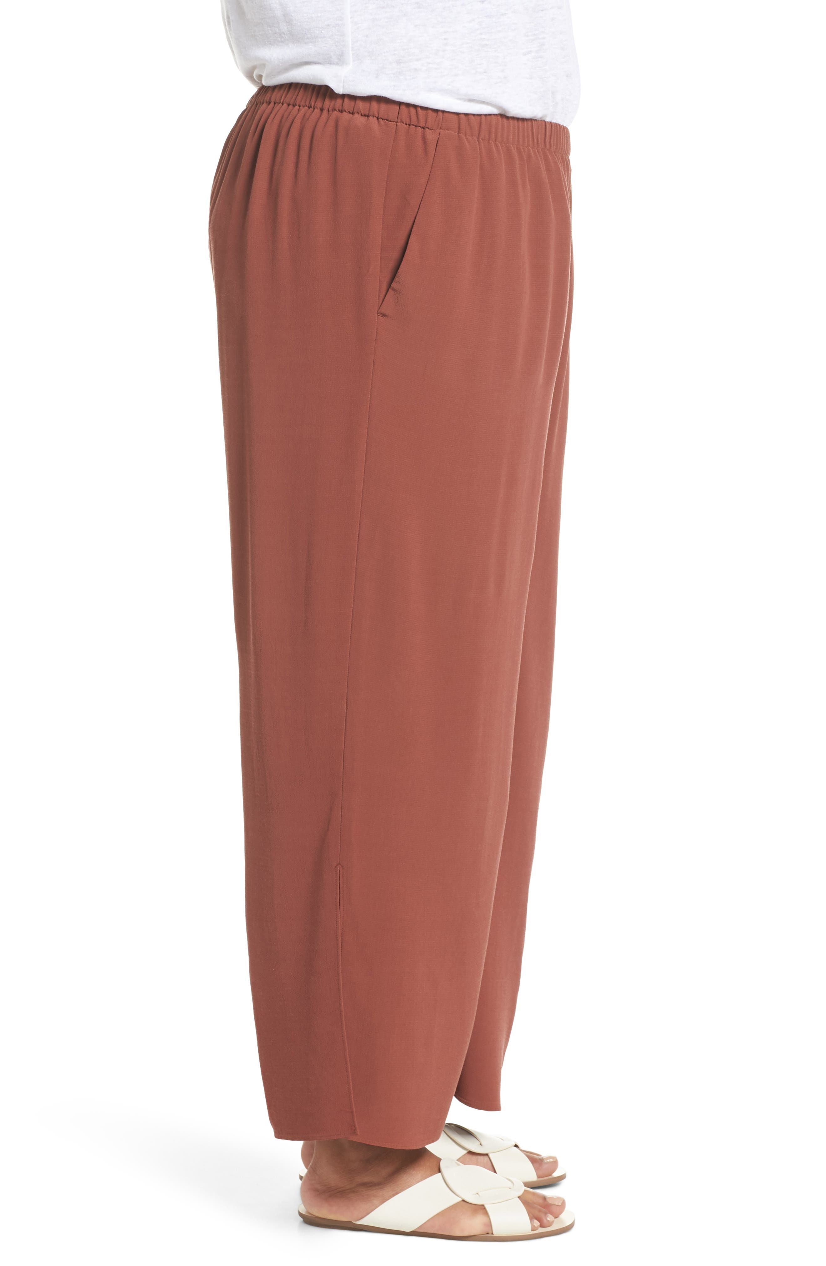 Wide Leg Ankle Pants,                             Alternate thumbnail 3, color,                             Russet