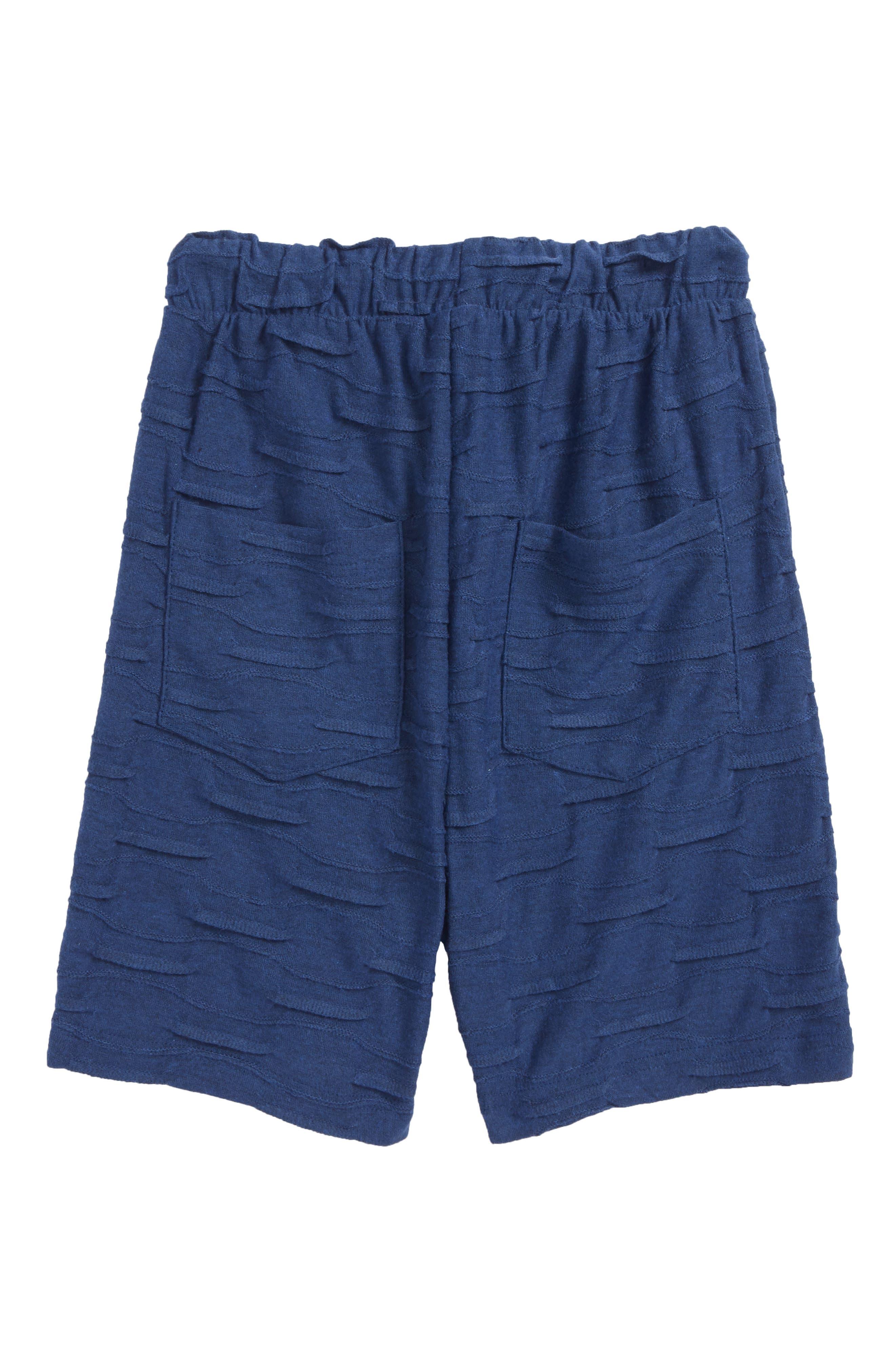 Cambria Shorts,                             Alternate thumbnail 2, color,                             Blue